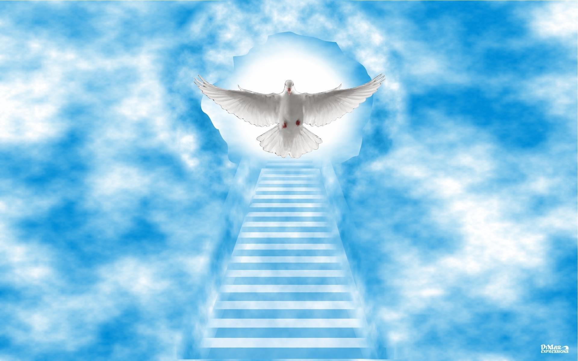 Ангелы в небе  № 2270109 загрузить