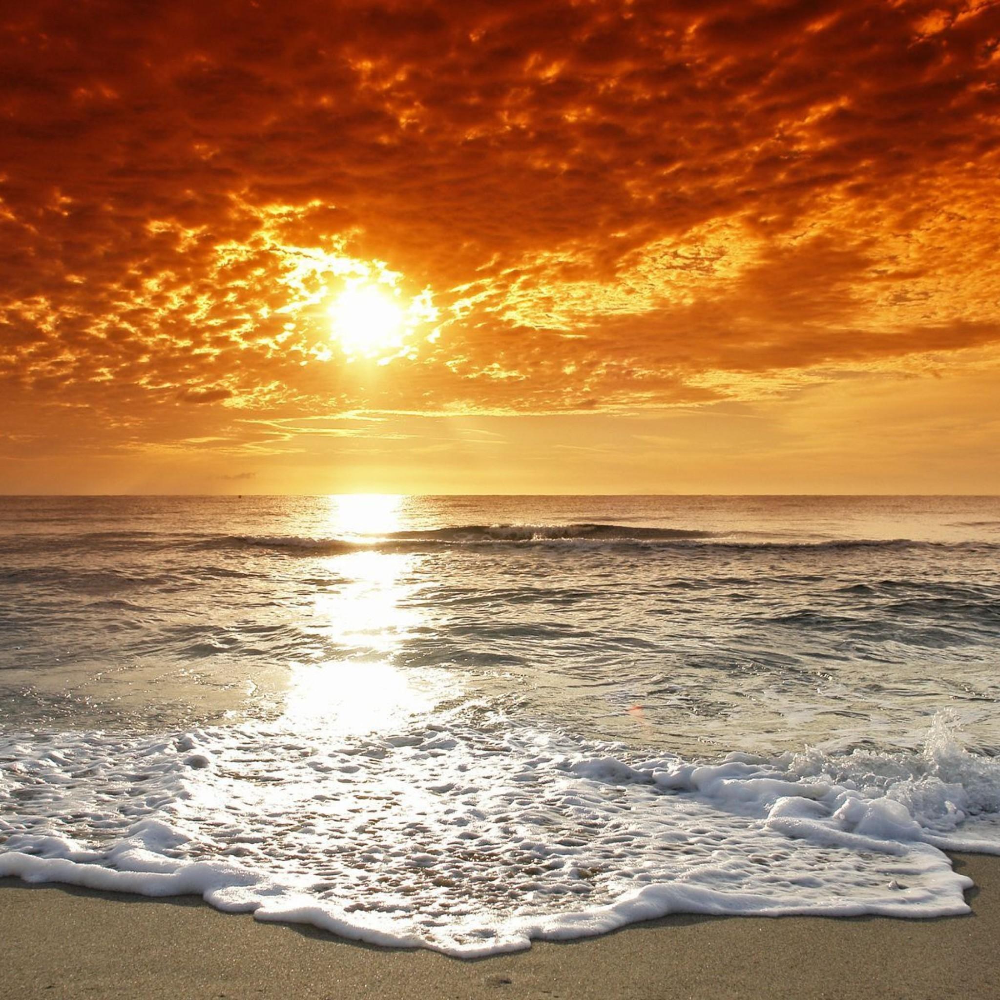 California Beach Wallpaper ·①