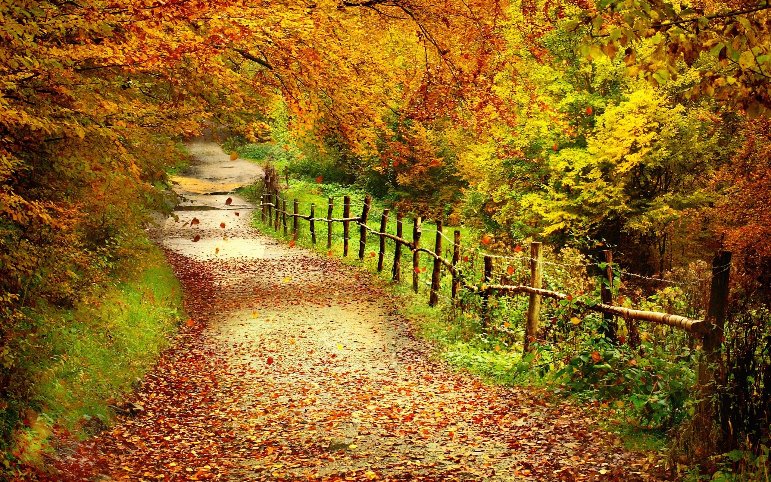 Autumn Scenes Wallpaper Wallpapertag