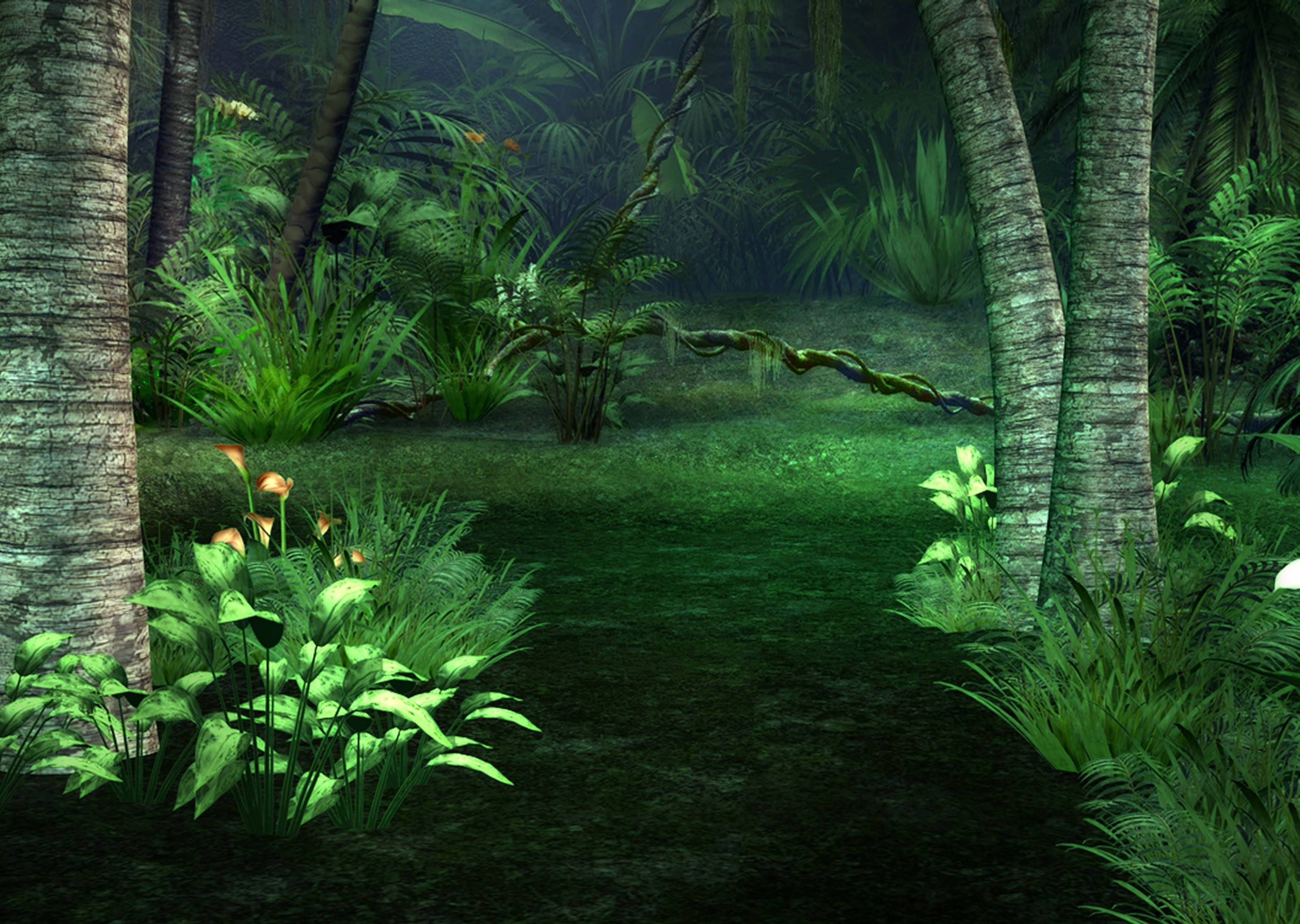 Jungle Background ·① Download Free Beautiful HD Wallpapers