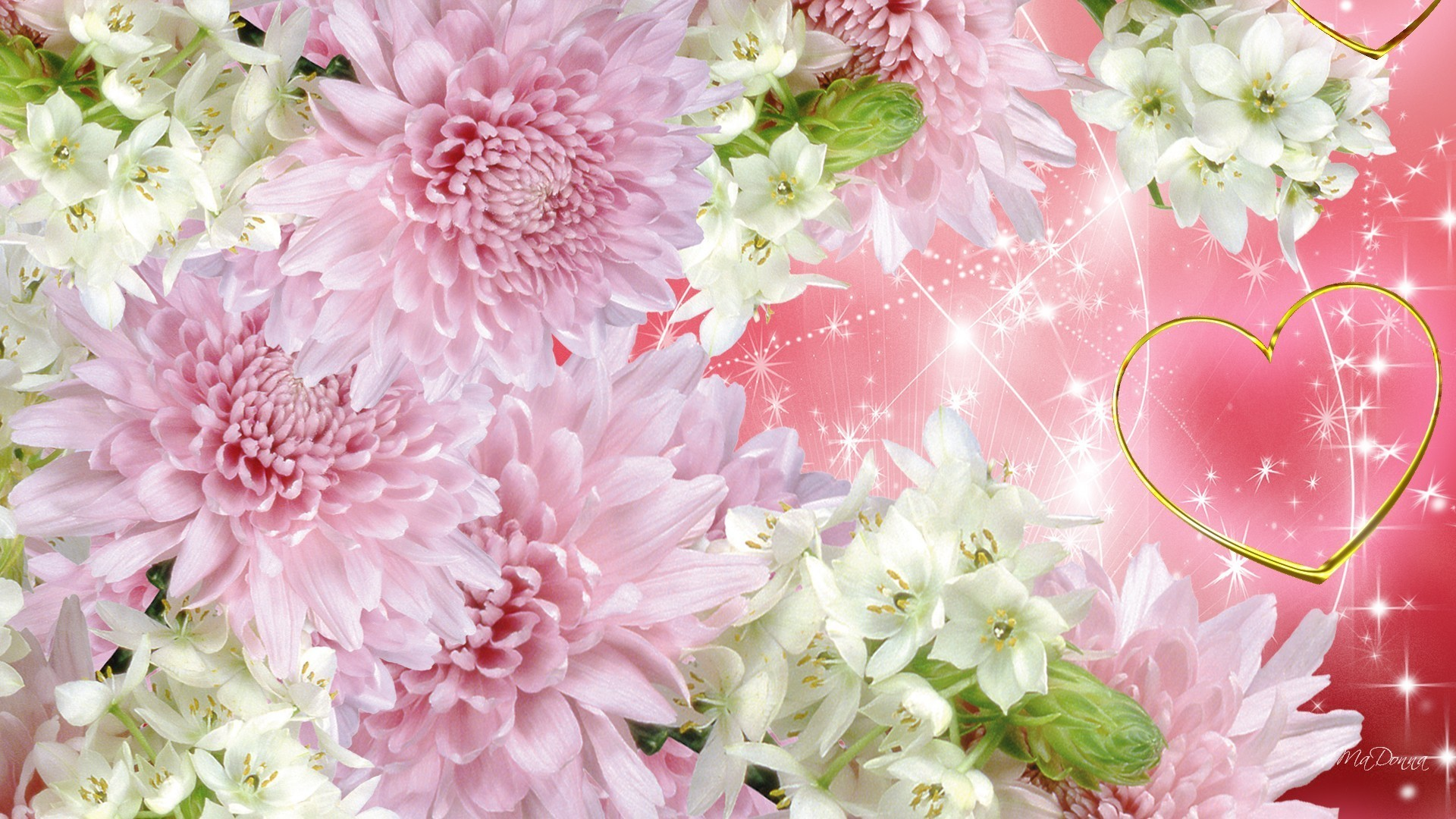 Гиф надписями, картинка с хризантемами для открытки