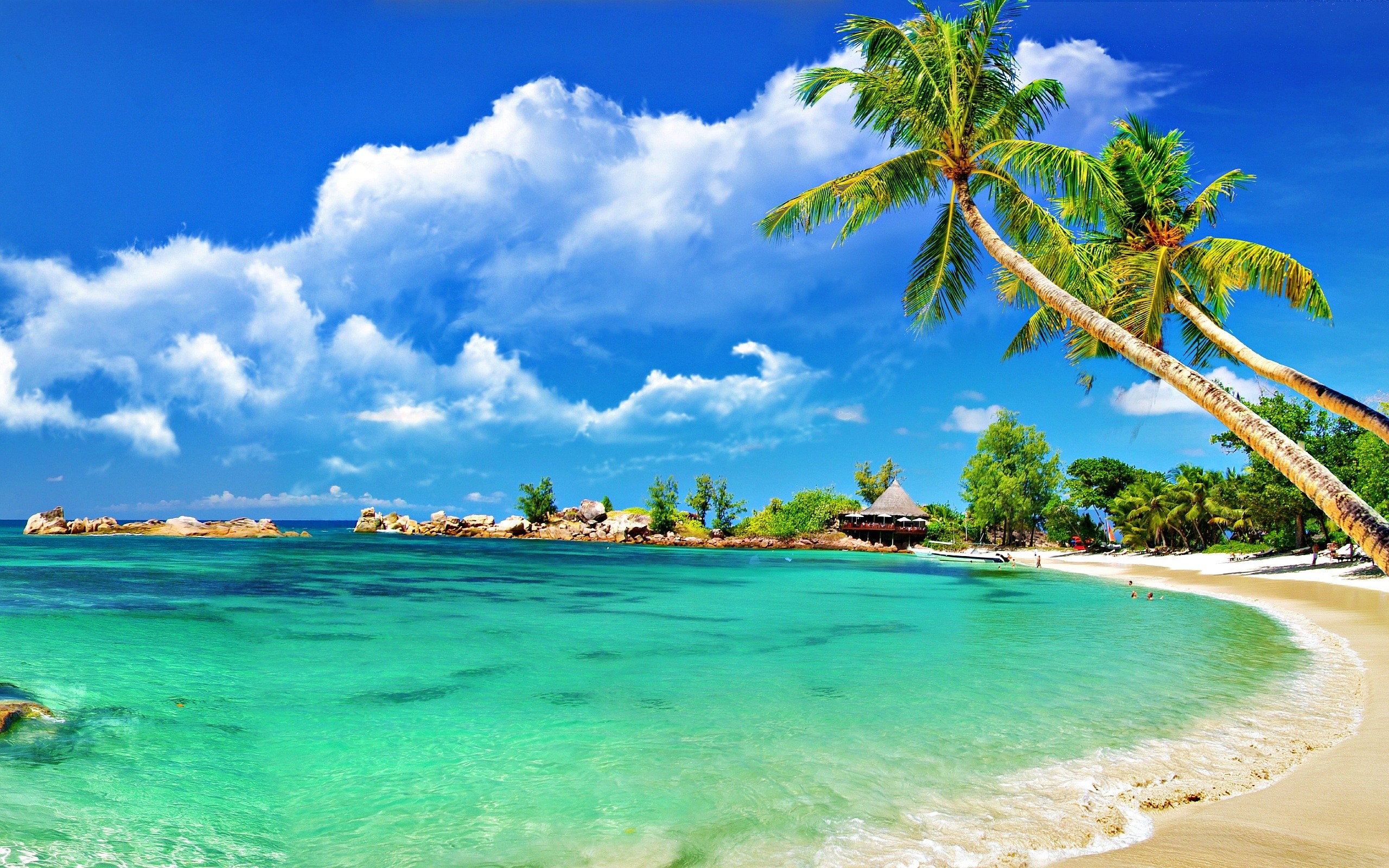 hd beach wallpaper ·① download free amazing backgrounds for desktop