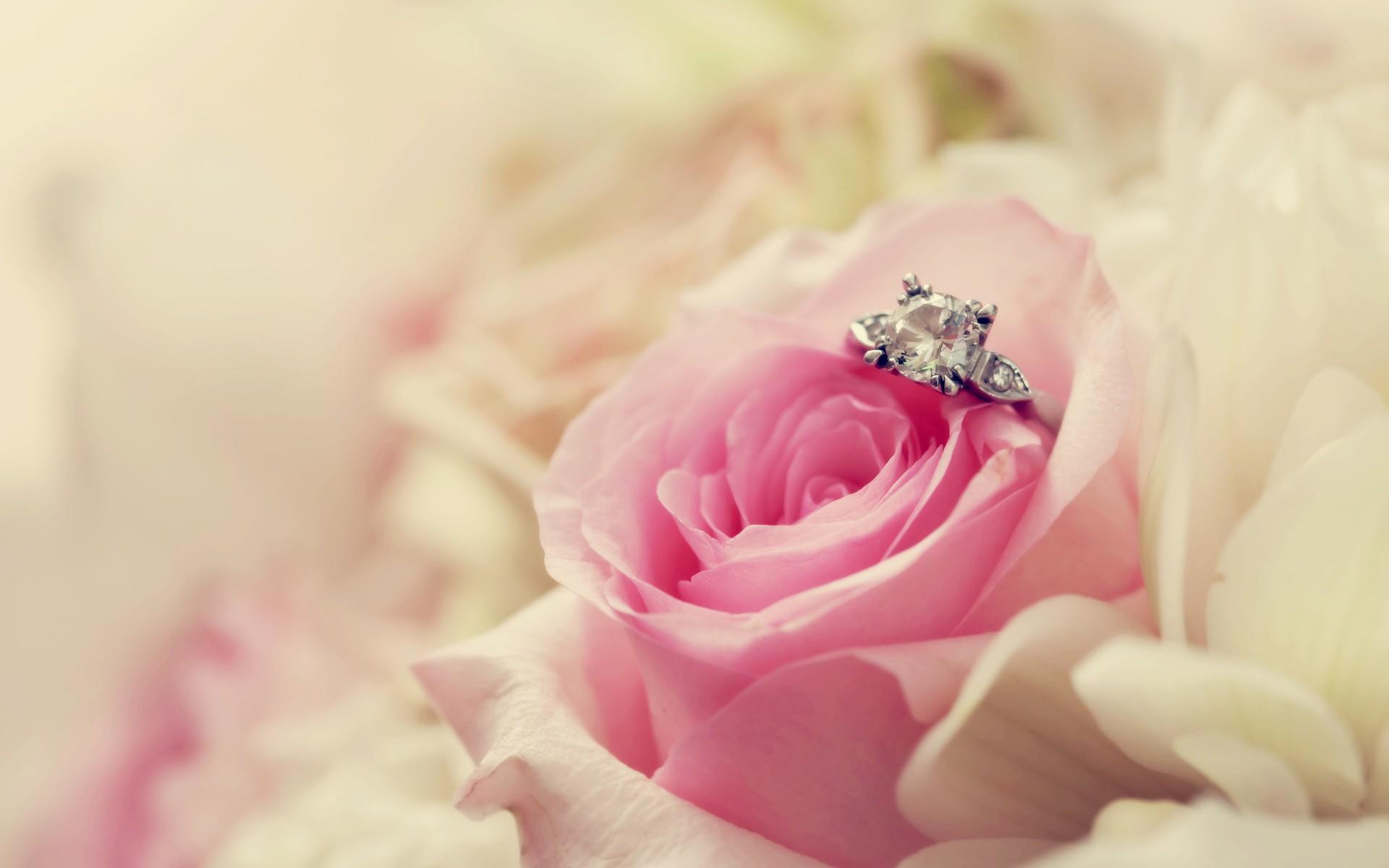 White Gold Wedding Ring Elegant Hd Wedding Backgrounds o