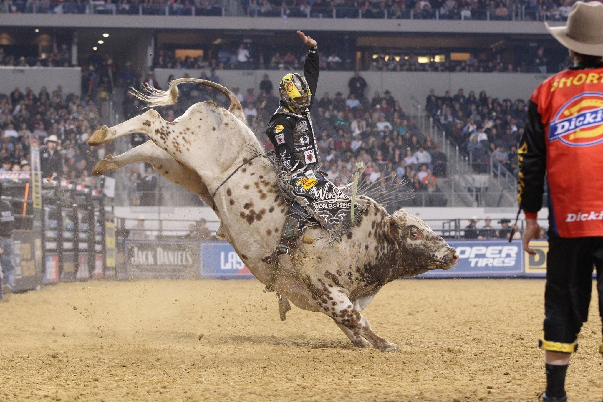 Bull Riding Wallpapers 1