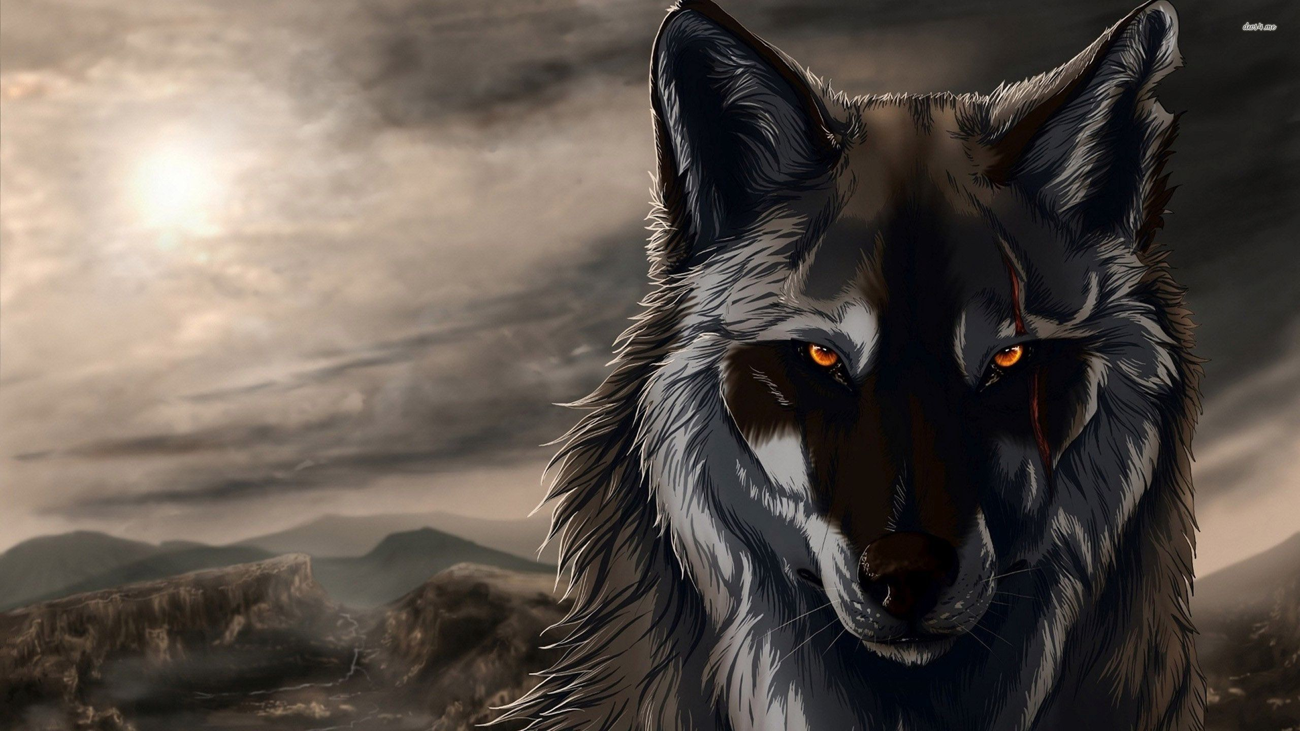 2560x1600 Wolf Computer Wallpapers, Desktop Backgrounds