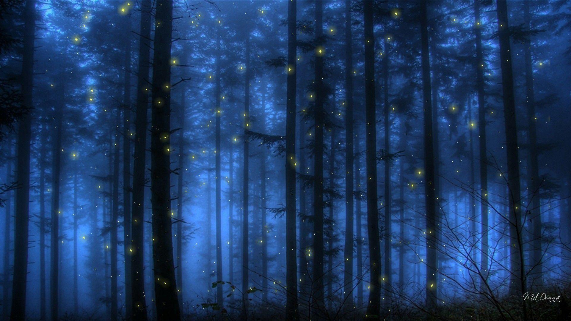 Fireflies Wallpaper Wallpapertag