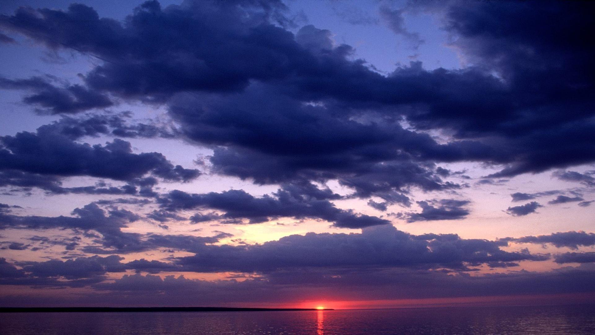 Protecting Dark Skies and the Creatures Below - Images