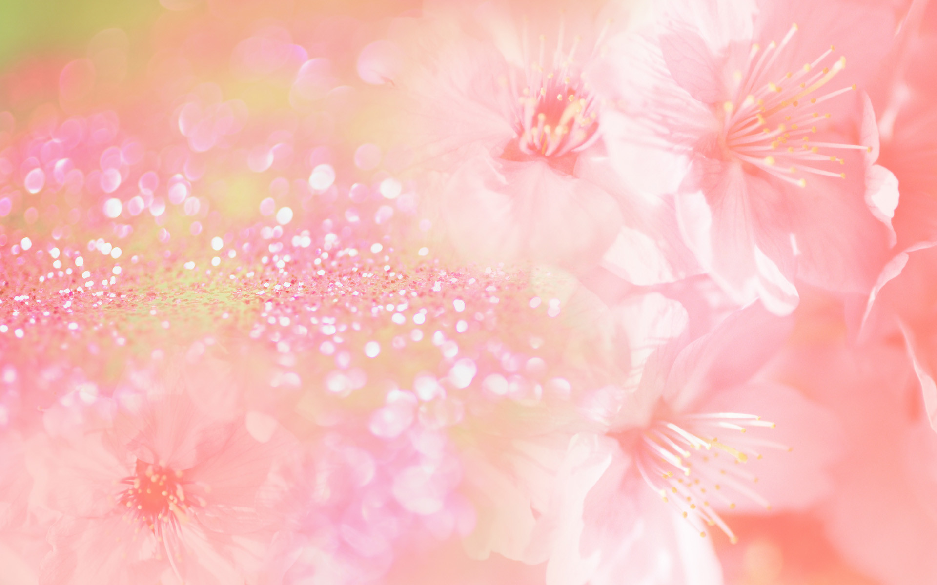 Pink flowers background awesome pink flower image mightylinksfo