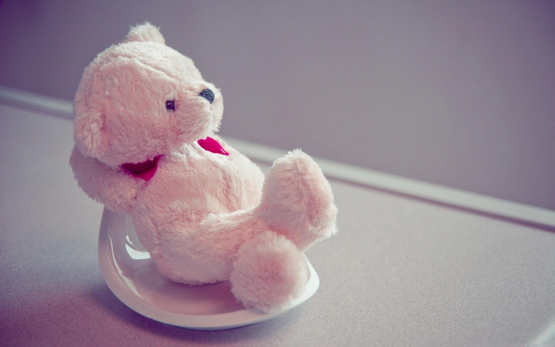 1920x1200 Beautiful Cute Teddy Bear HD Wallpapers Download