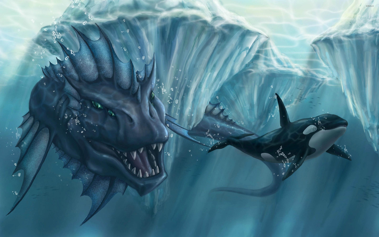 Orca Wallpaper 1