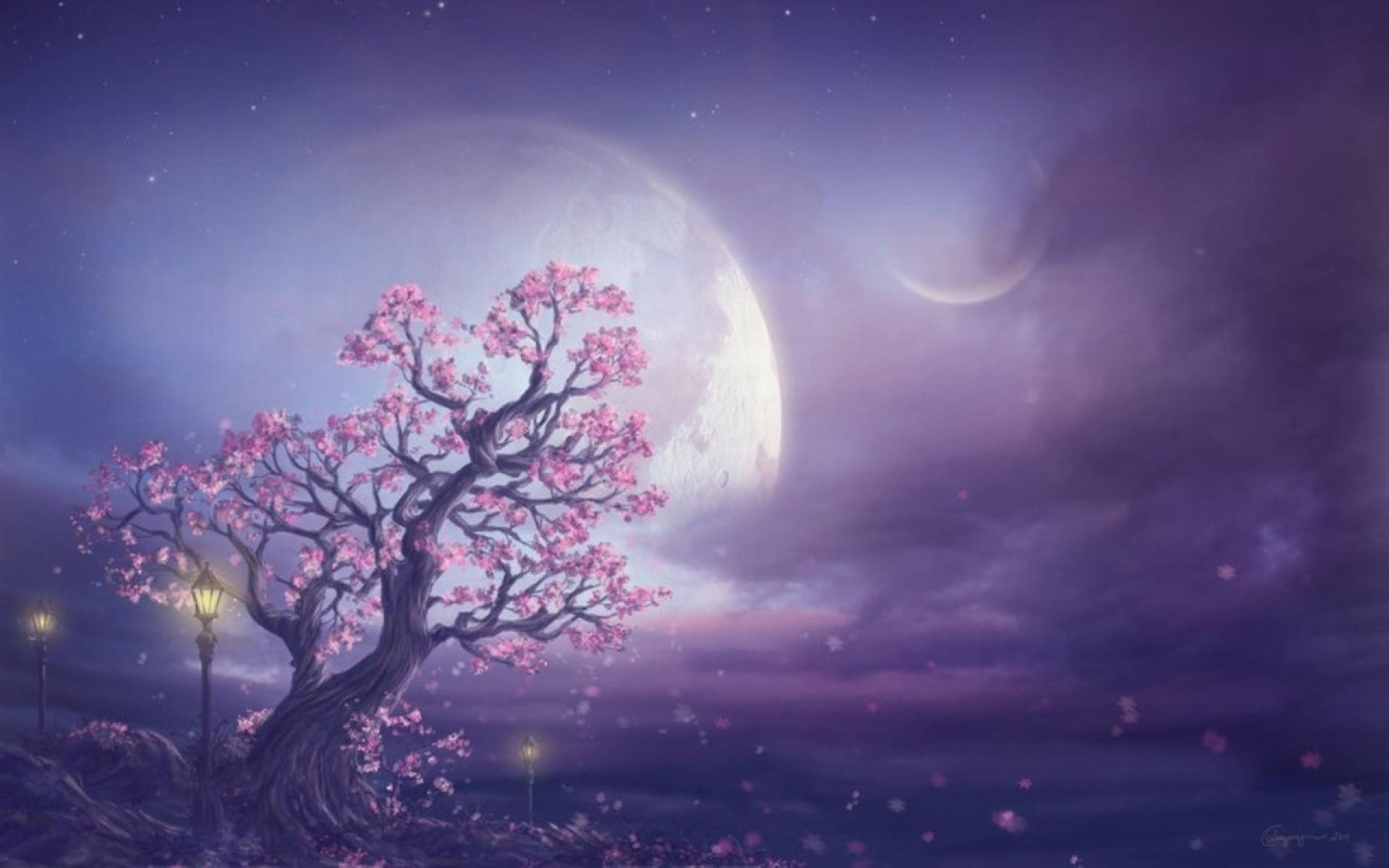 Fairy Desktop Wallpaper Wallpapertag