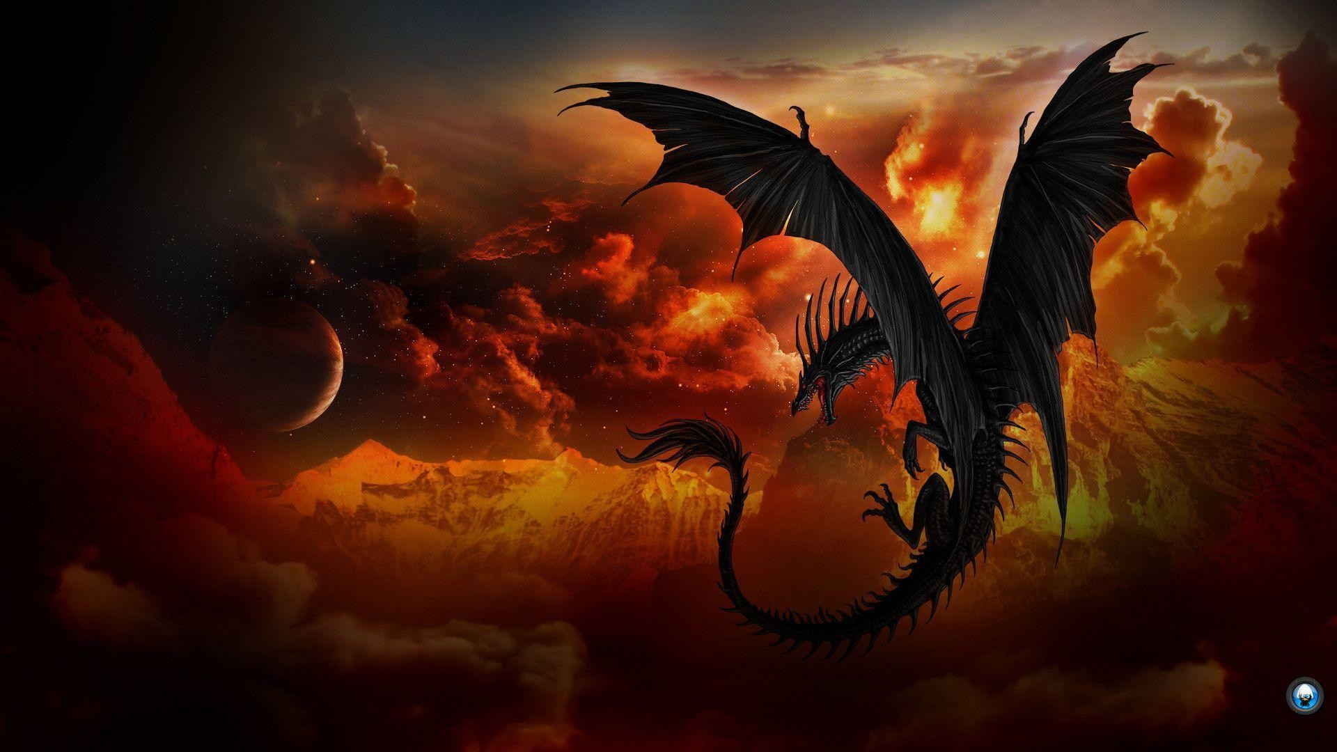 Black Dragon Wallpaper Wallpapertag