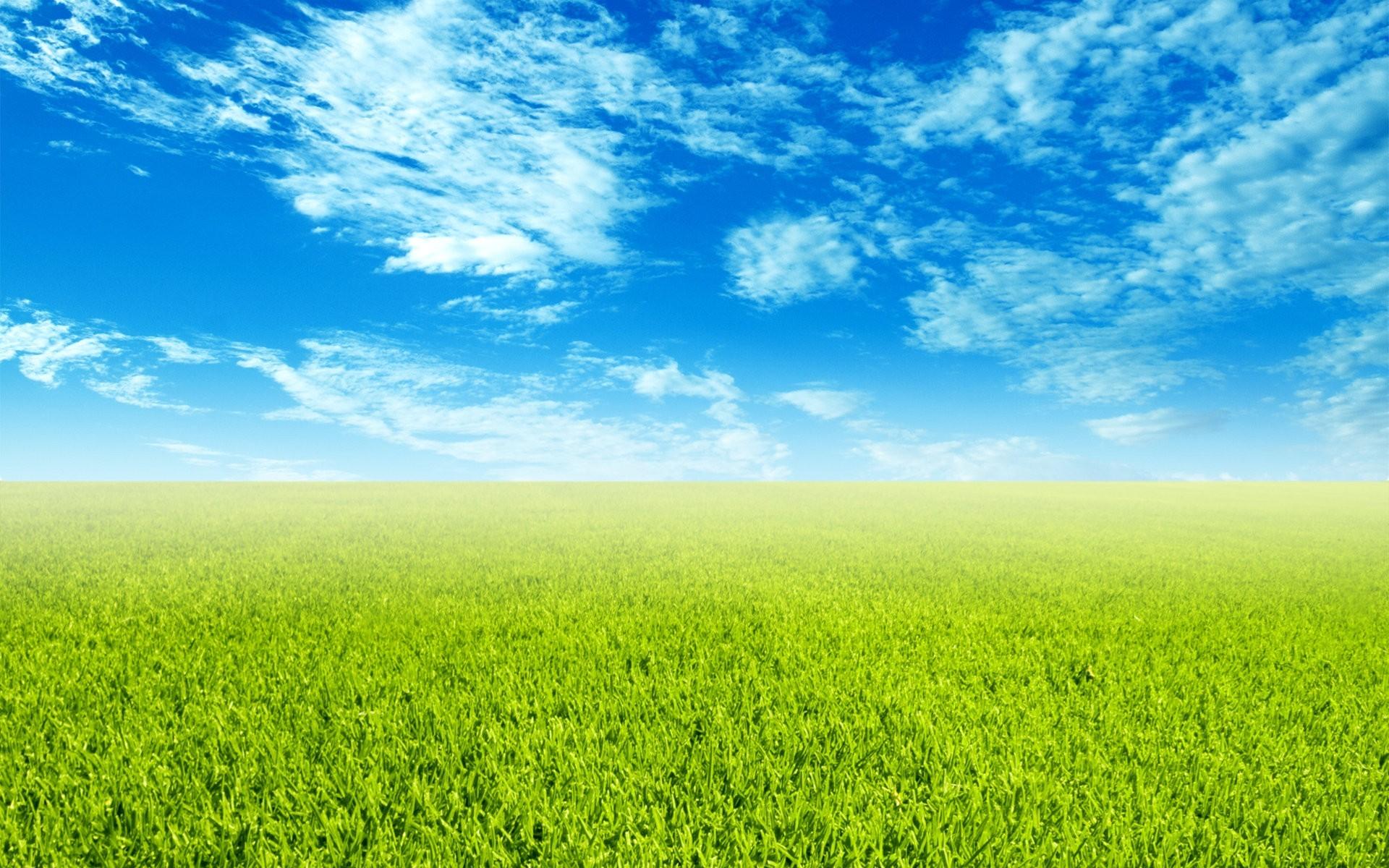 green grass background - HD1920×1200