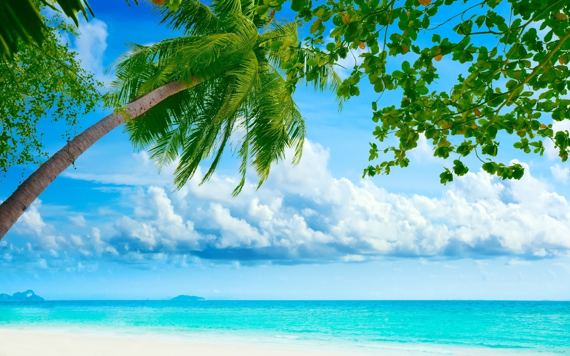 2560x1440 Beach HD Wallpapers · Download