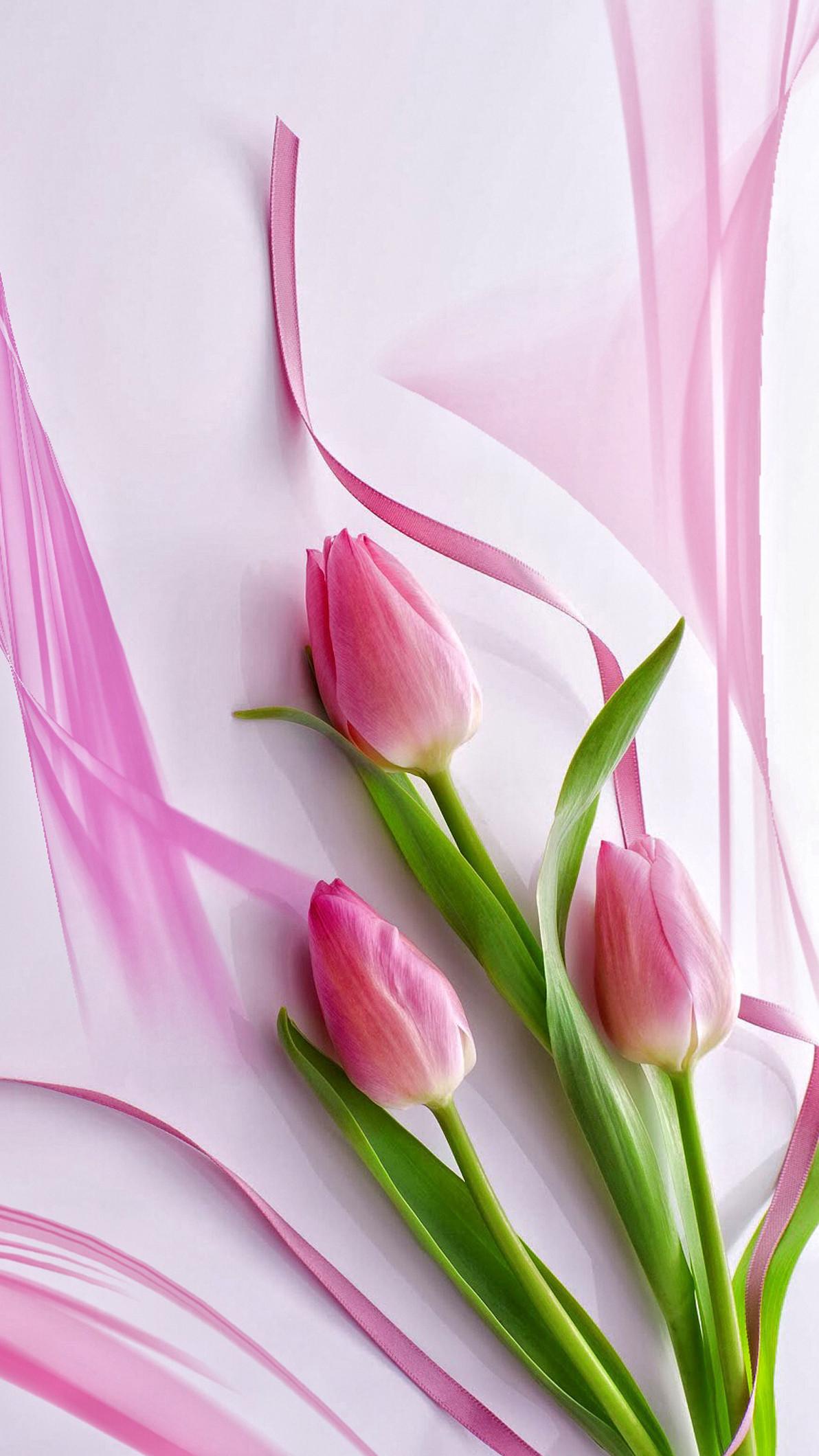 Pink Tulips Wallpaper ·① WallpaperTag