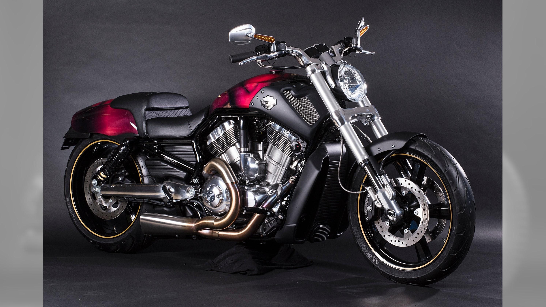 Harley Davidson Iron  Top Speed