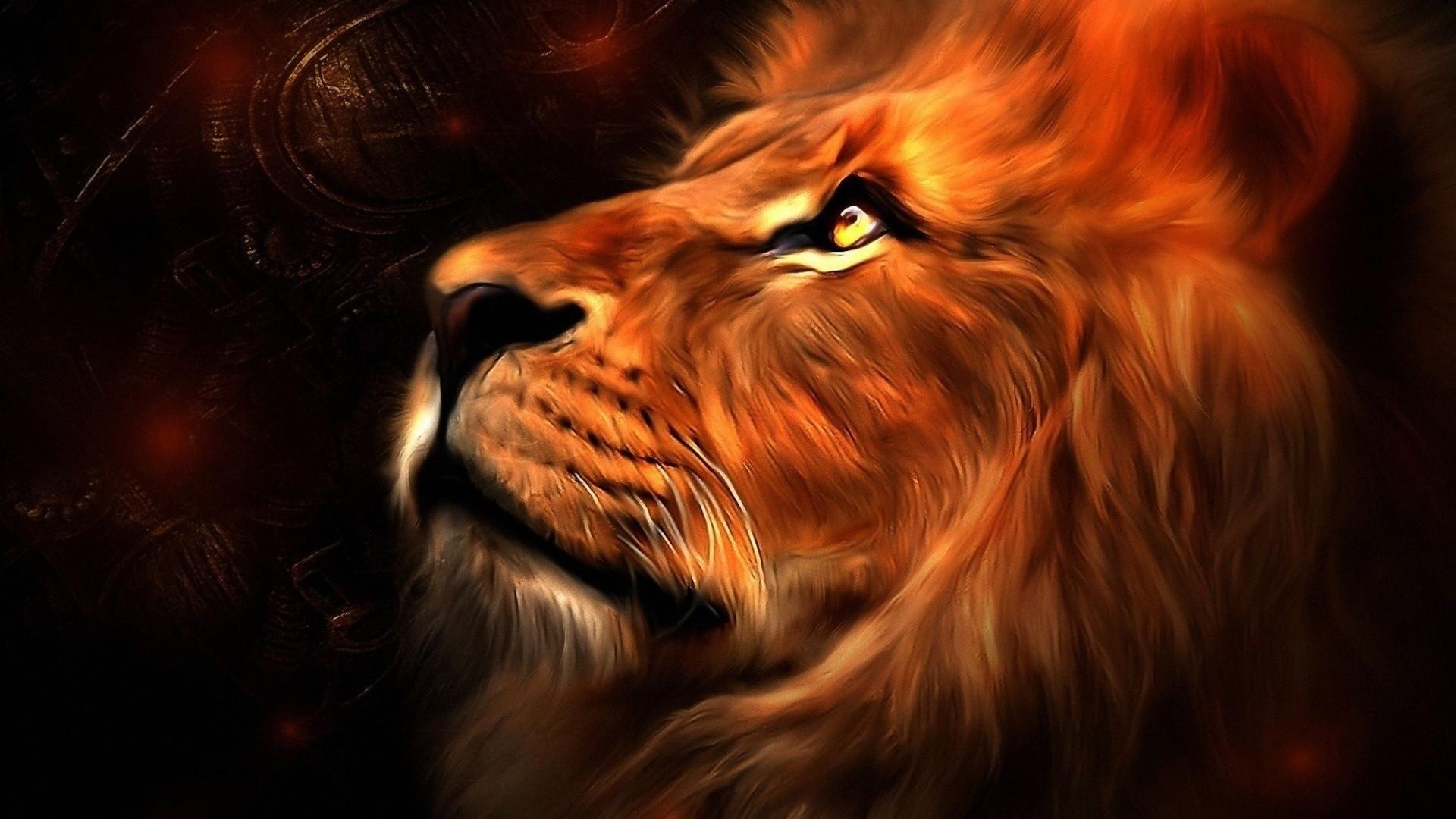 Lion Of Judah Wallpaper Wallpapertag