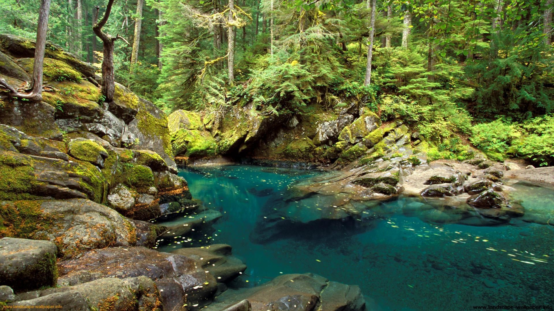 Nature wallpapers 1600x900 wallpapertag - Wallpapers 1600x900 ...