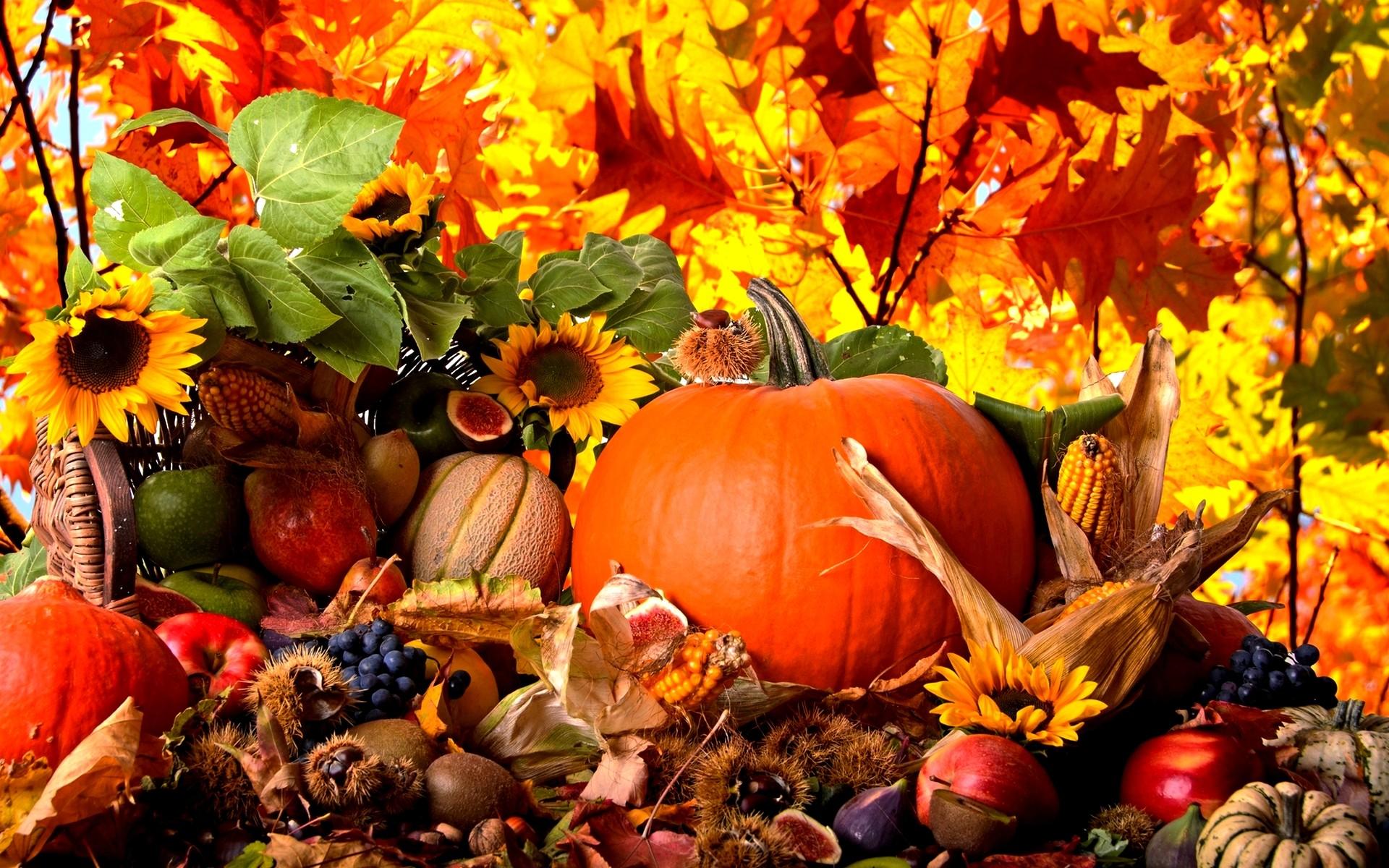Wallpaper Autumn ①