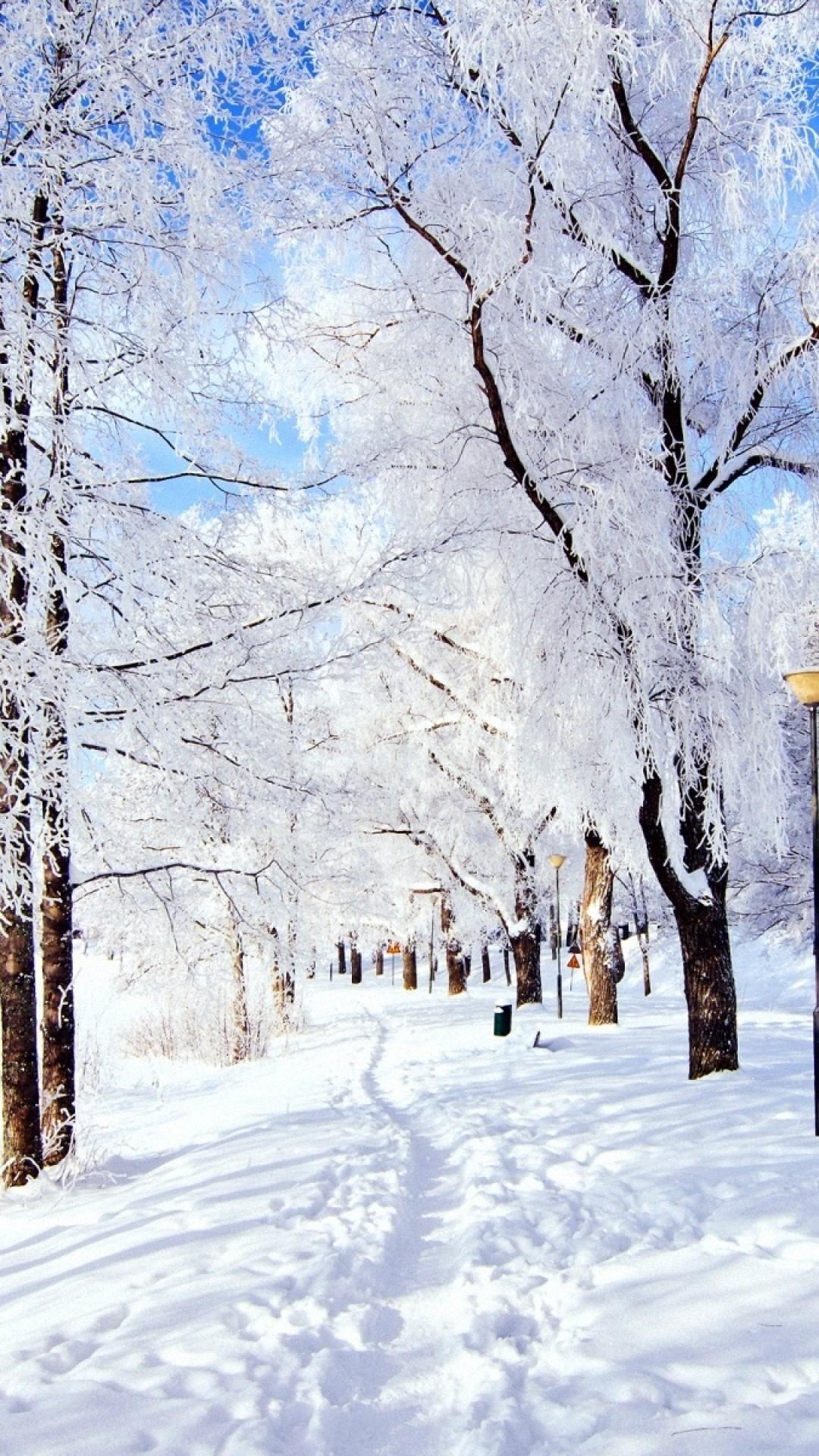 Snow Winter Wallpaper ·① WallpaperTag