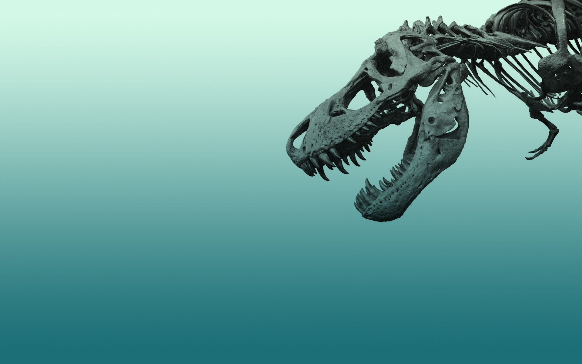 Dinosaur wallpaper ·① Download free awesome High ...