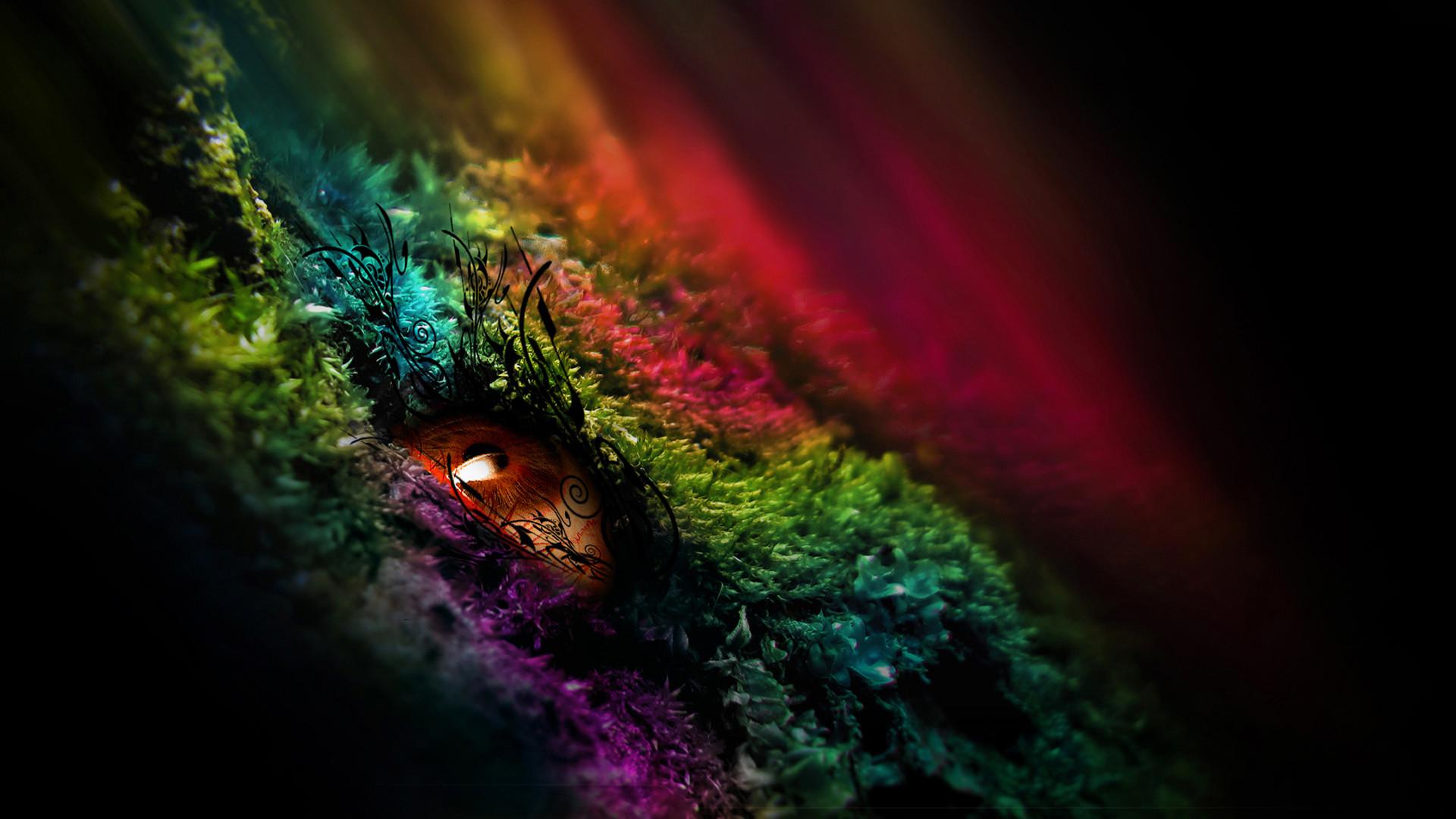 color hd wallpaper ·①