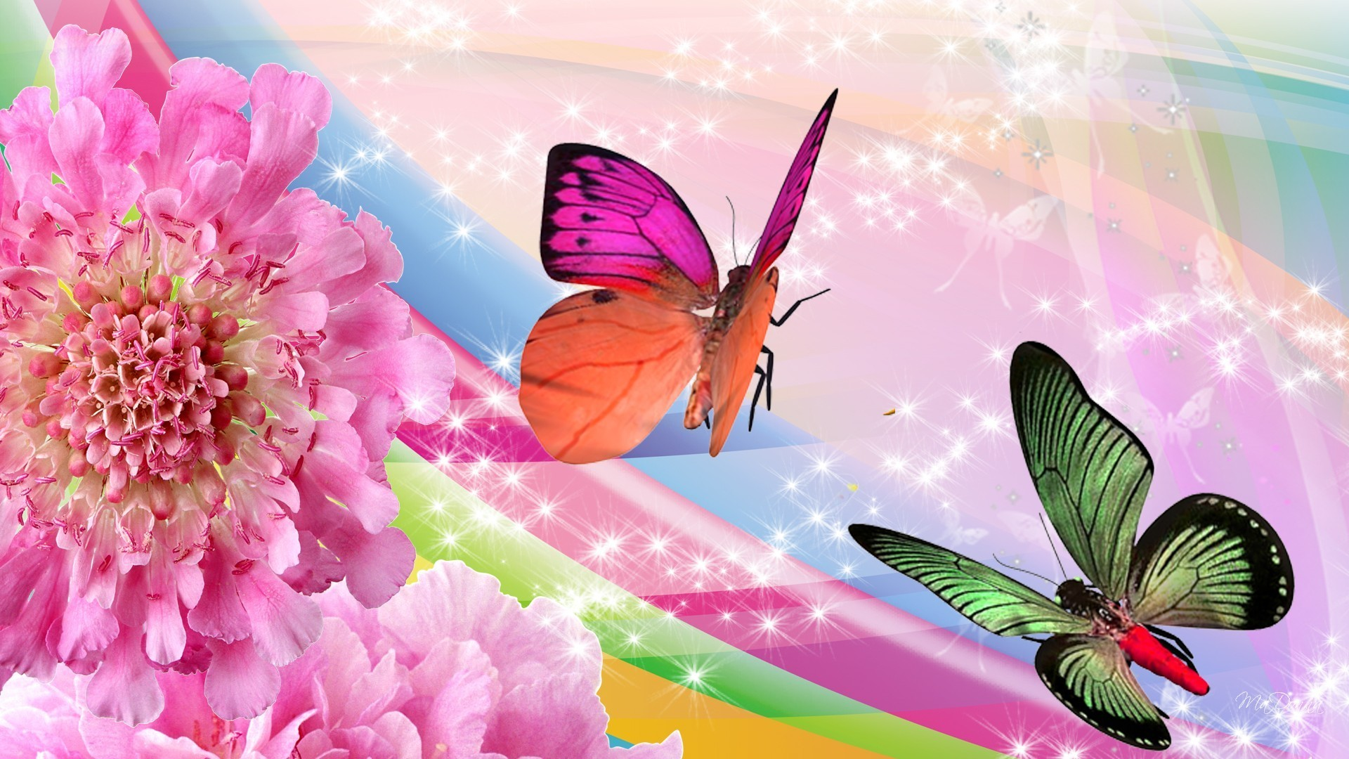Butterfly And Flower Wallpaper 1