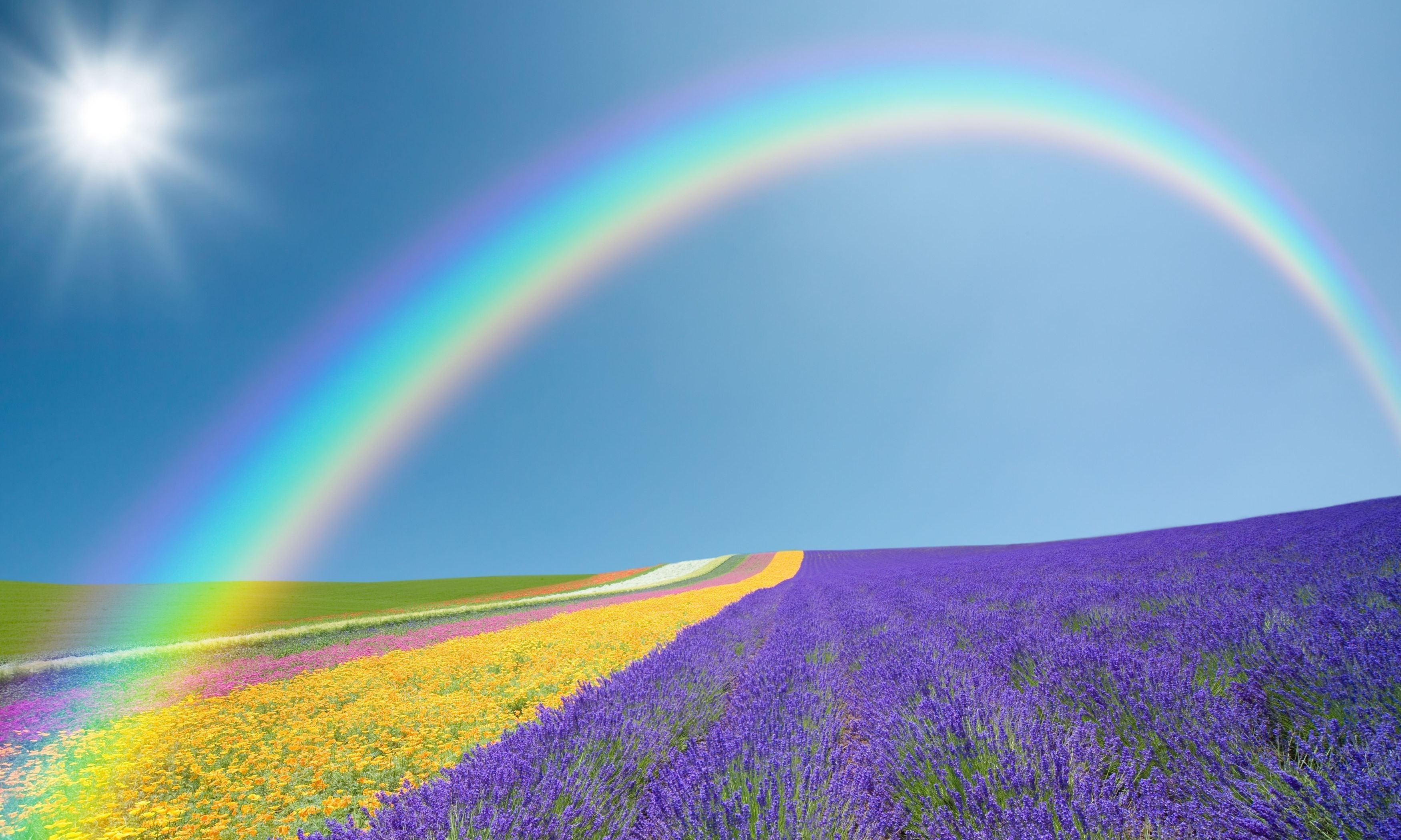 rainbow desktop background 183��
