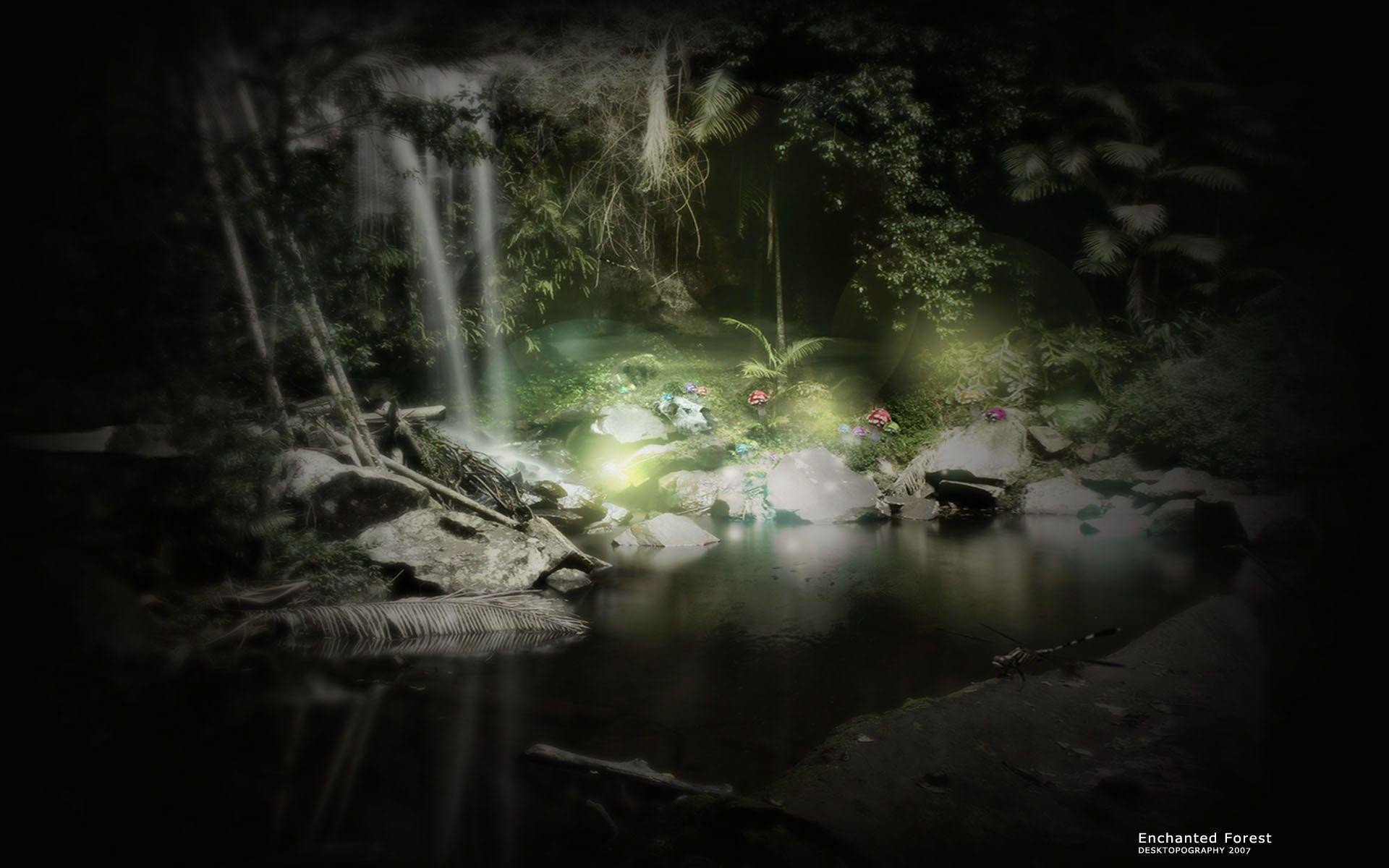 Enchanted Forest Backgrounds 183 ① Wallpapertag