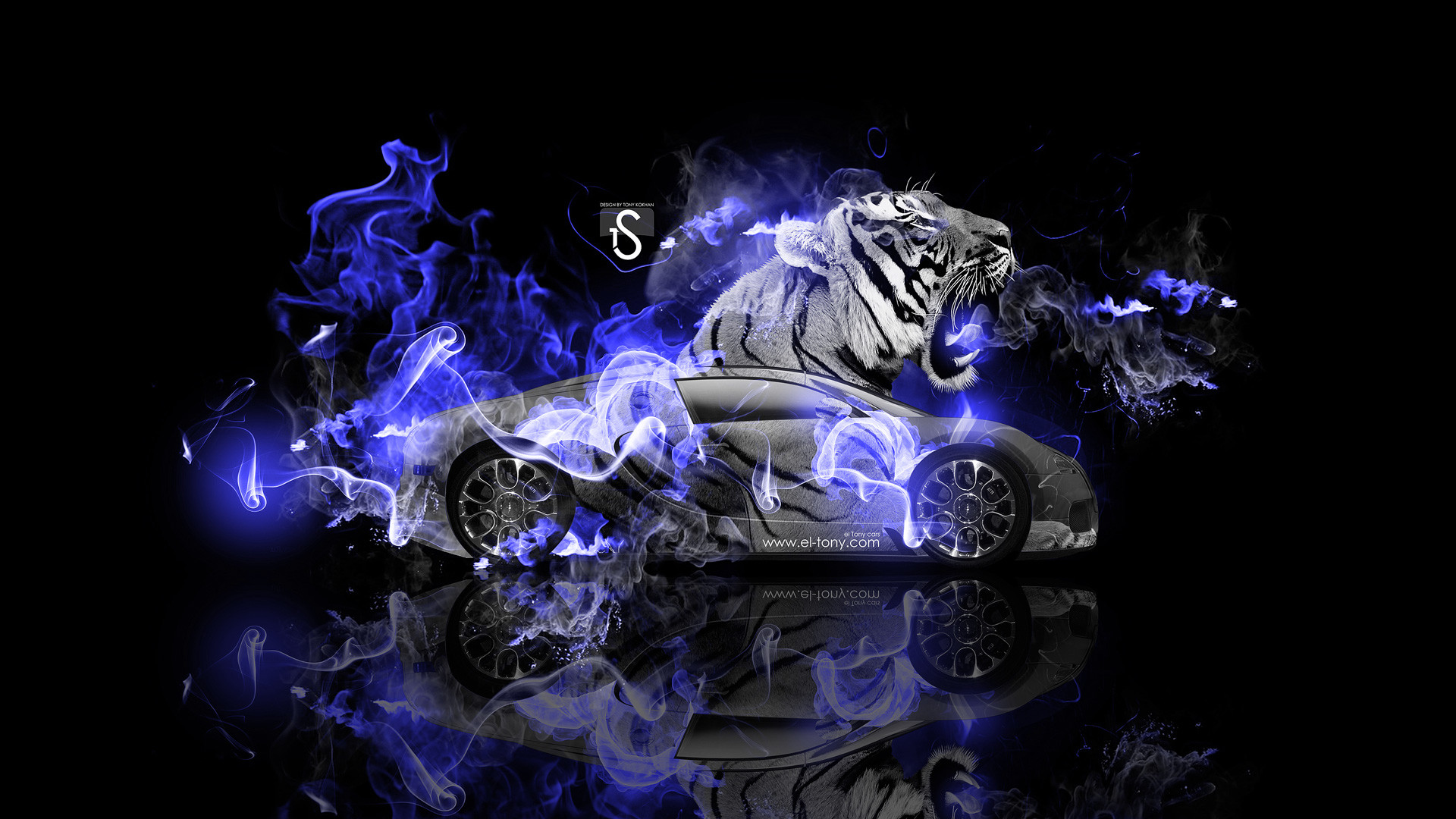 Fire Lion Wallpapers ·① WallpaperTag