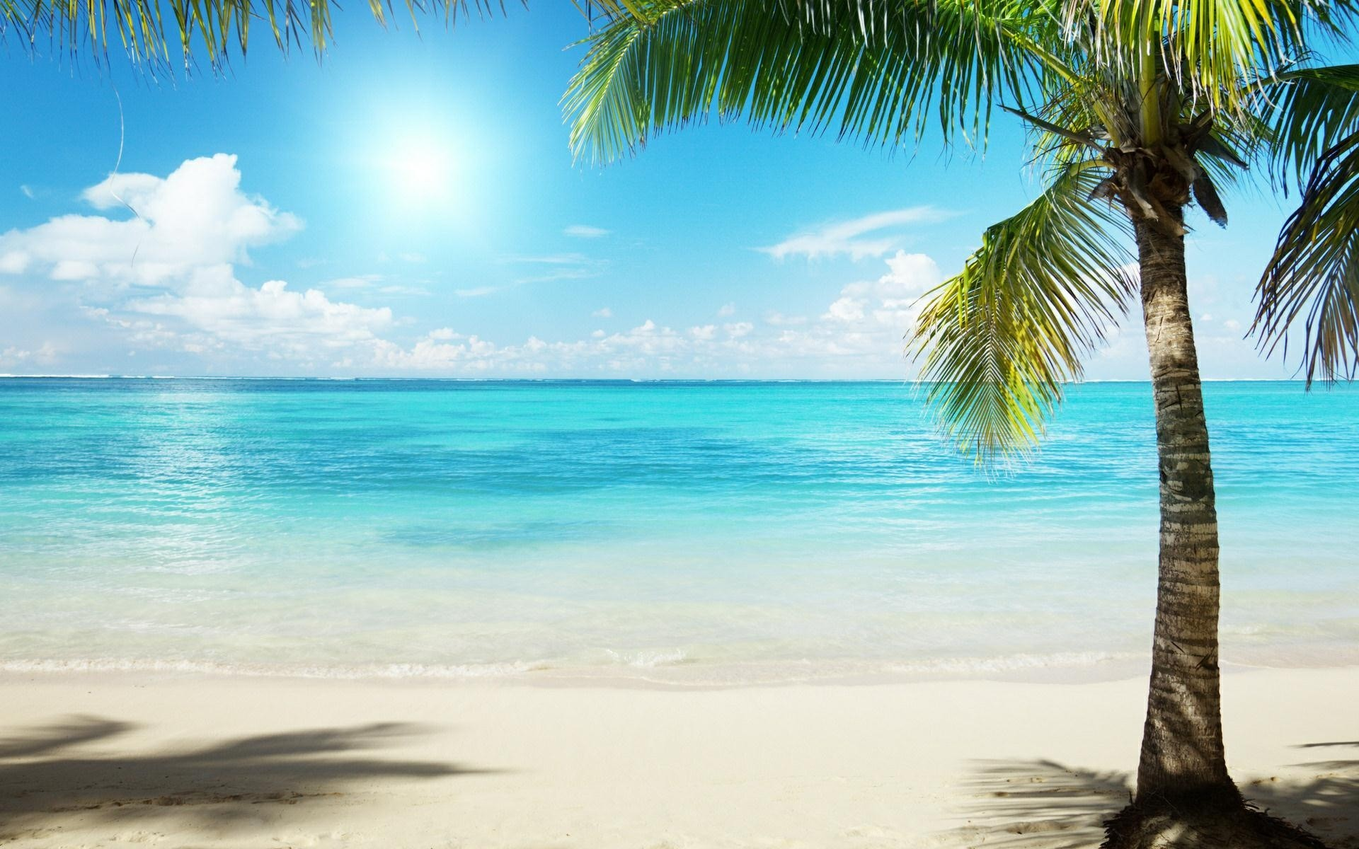 Amazing Wallpaper Macbook Beach - 527631-tropical-beach-background-1920x1200-macbook  Collection_672665.jpg