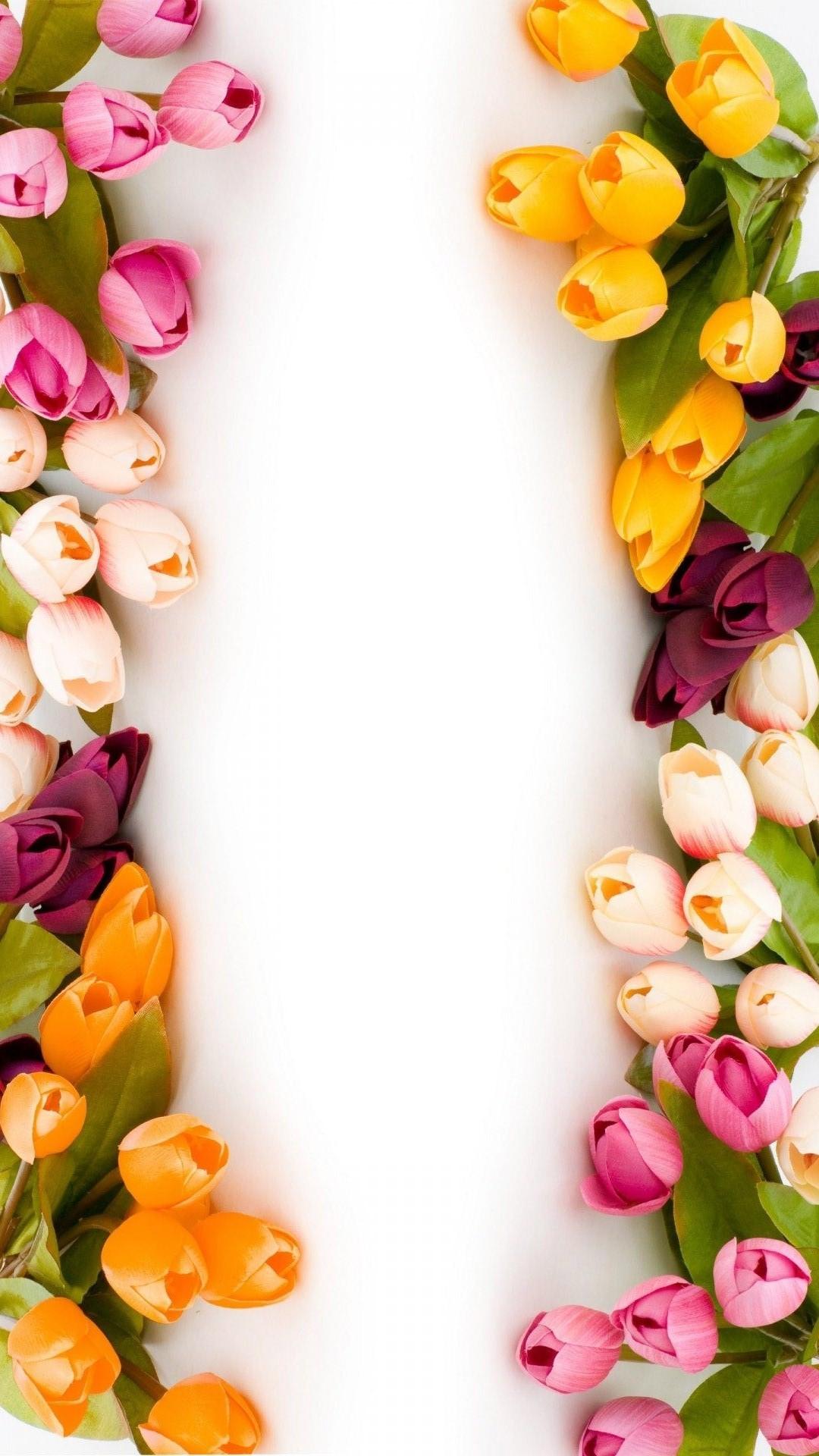 Desktop Backgrounds Wallpapers Tulip Flowers Flowers Healthy