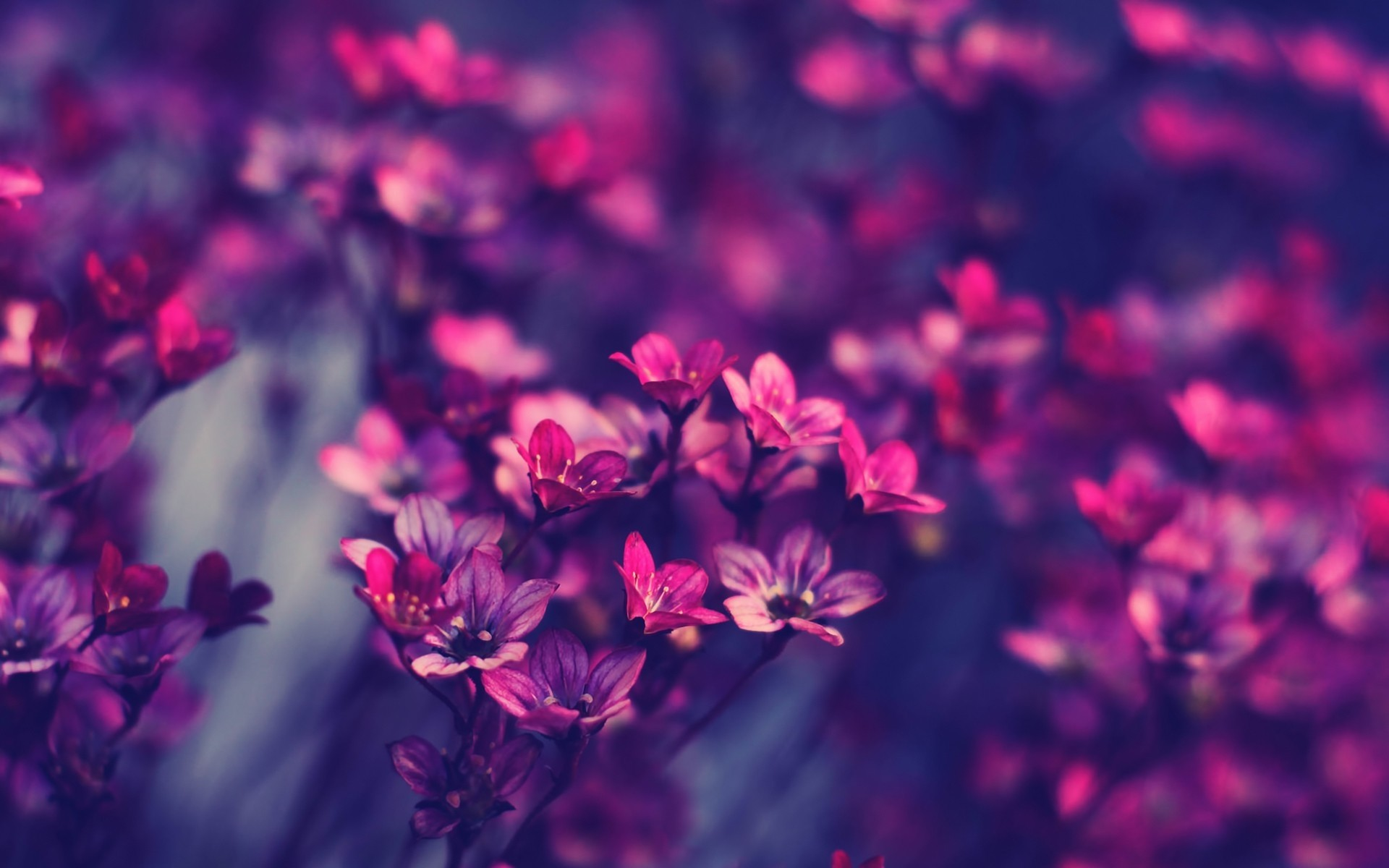 Aesthetic Background Tumblr Download Free Awesome Hd