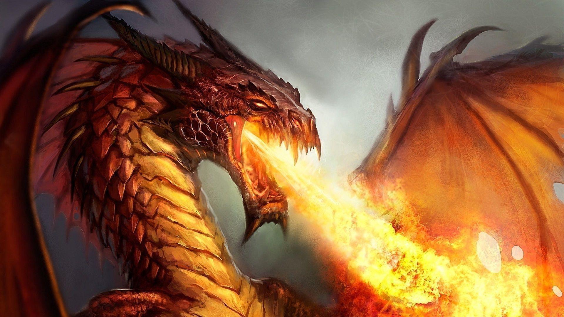 Dragon 3D Wallpaper ·① WallpaperTag