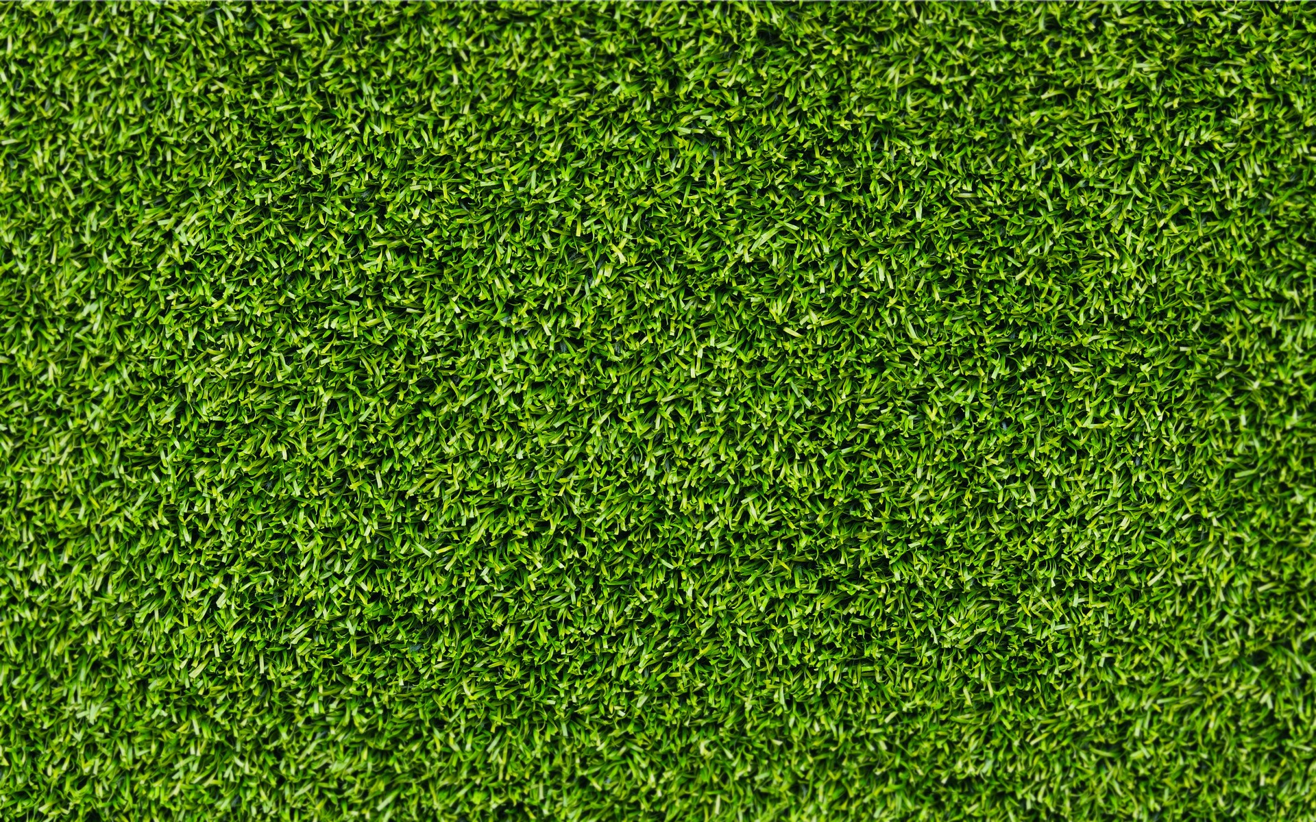 Grass background ·① Download free backgrounds for desktop ...