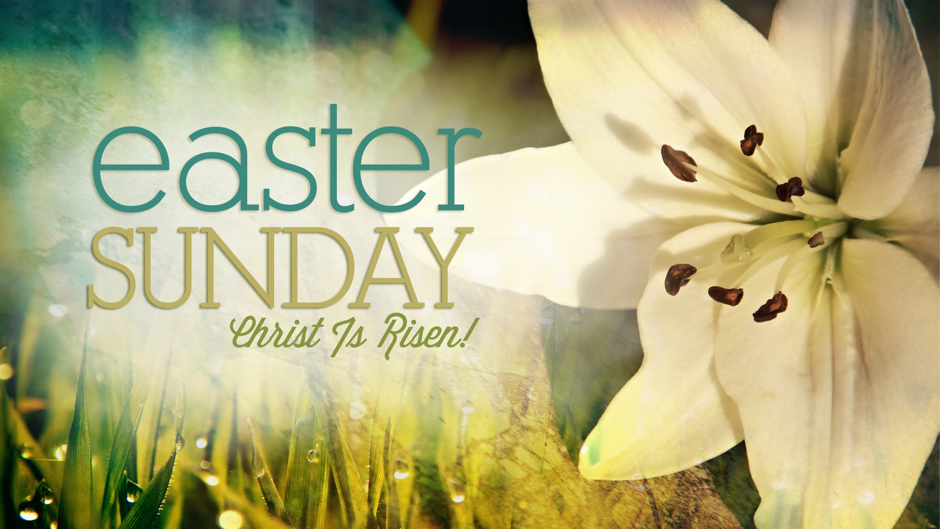 33+ Easter Worship backgrounds ·① Download free beautiful ...