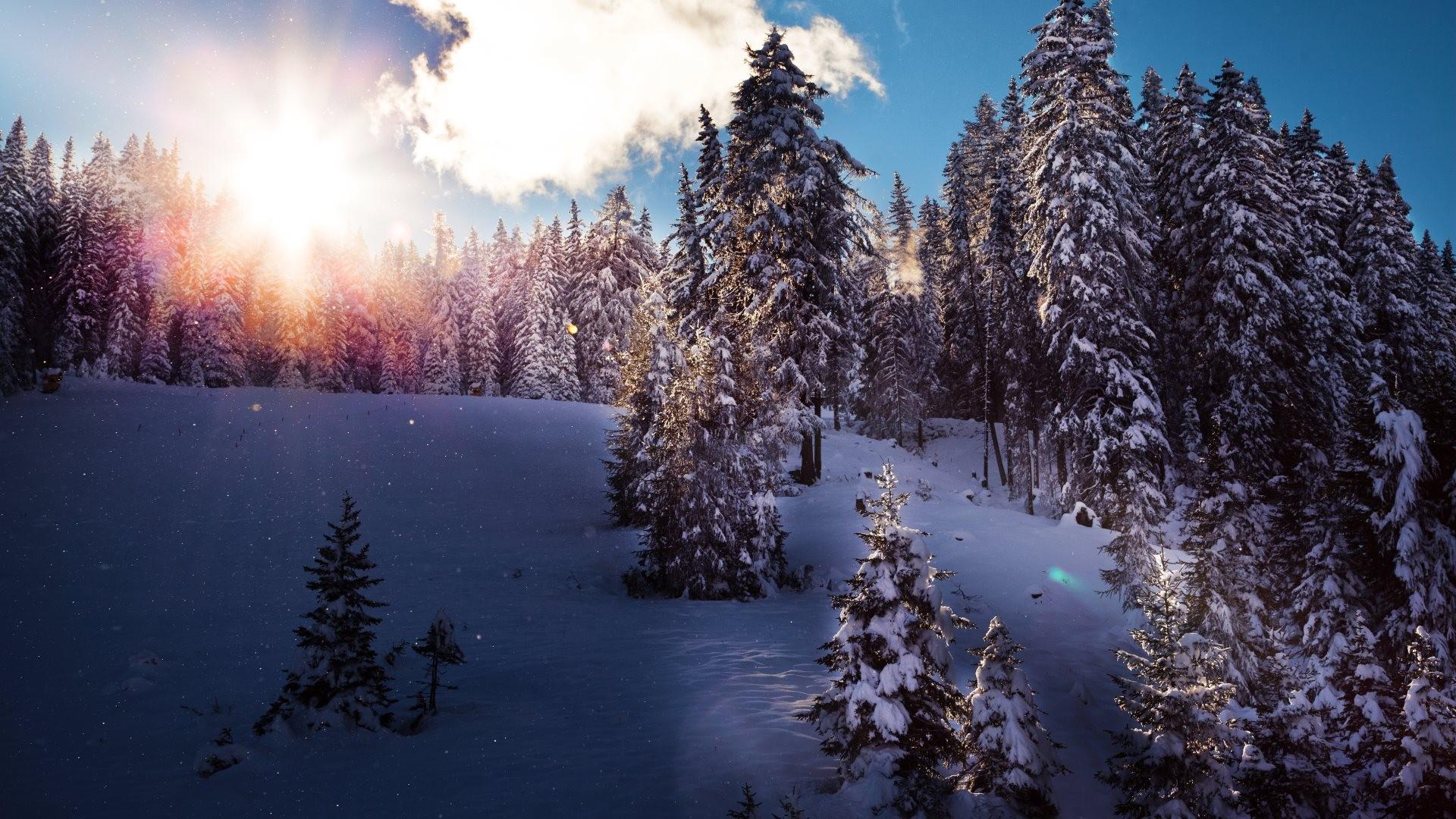 Зображення робочий стіл зима