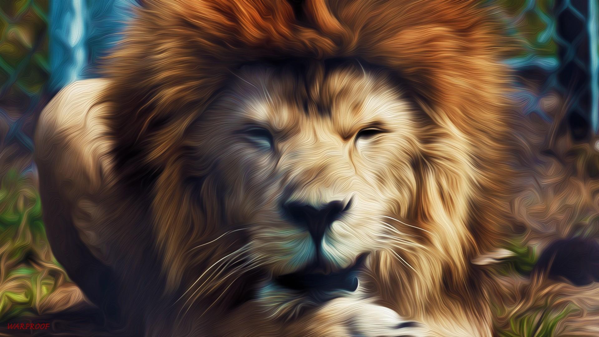 Lion Wallpaper HD ·① Download Free Amazing HD Wallpapers