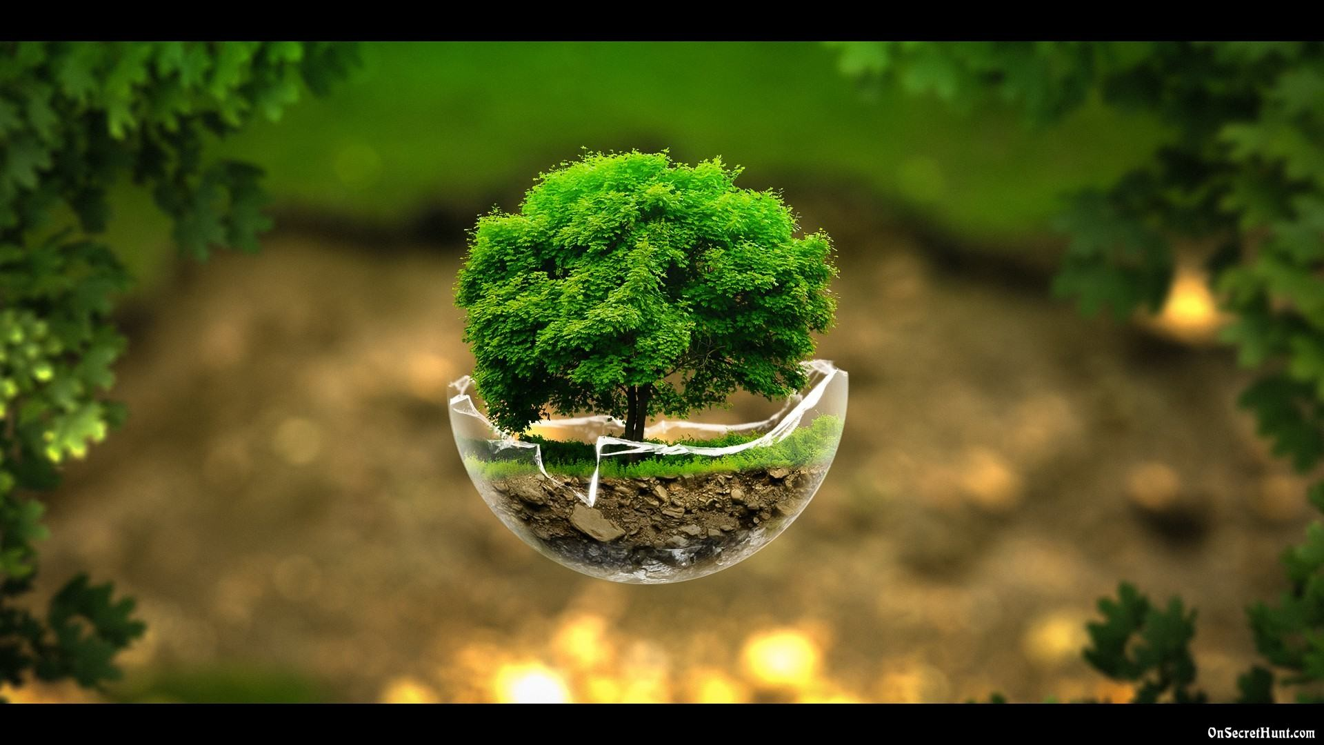 nature-wallpapers-2015-12 ...