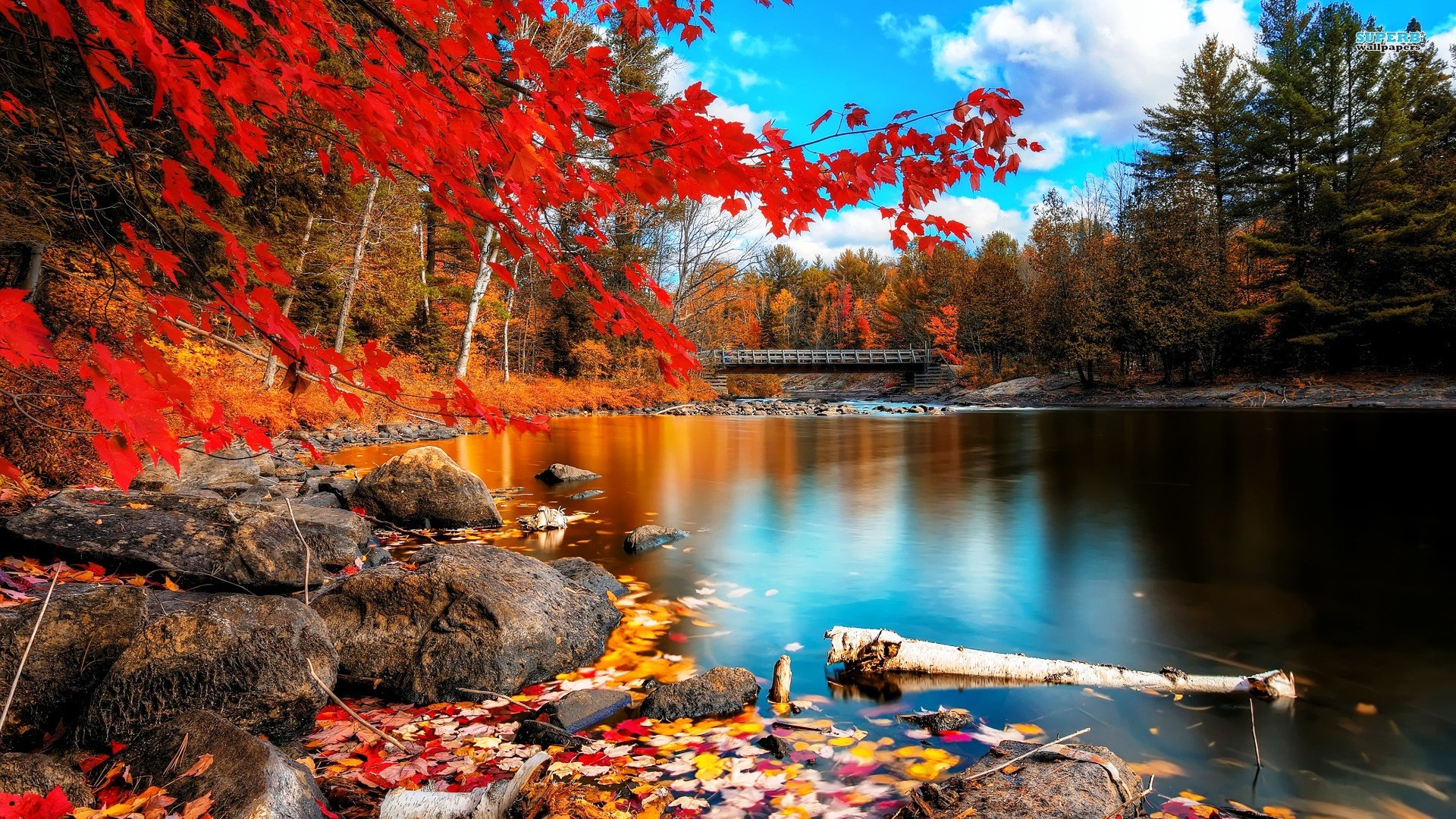 34 Autumn Wallpapers 1 Download Free Stunning For