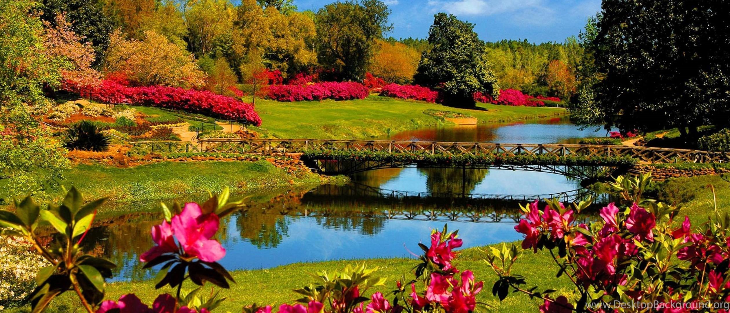 Springtime desktop background wallpapertag - Backgrounds springtime ...