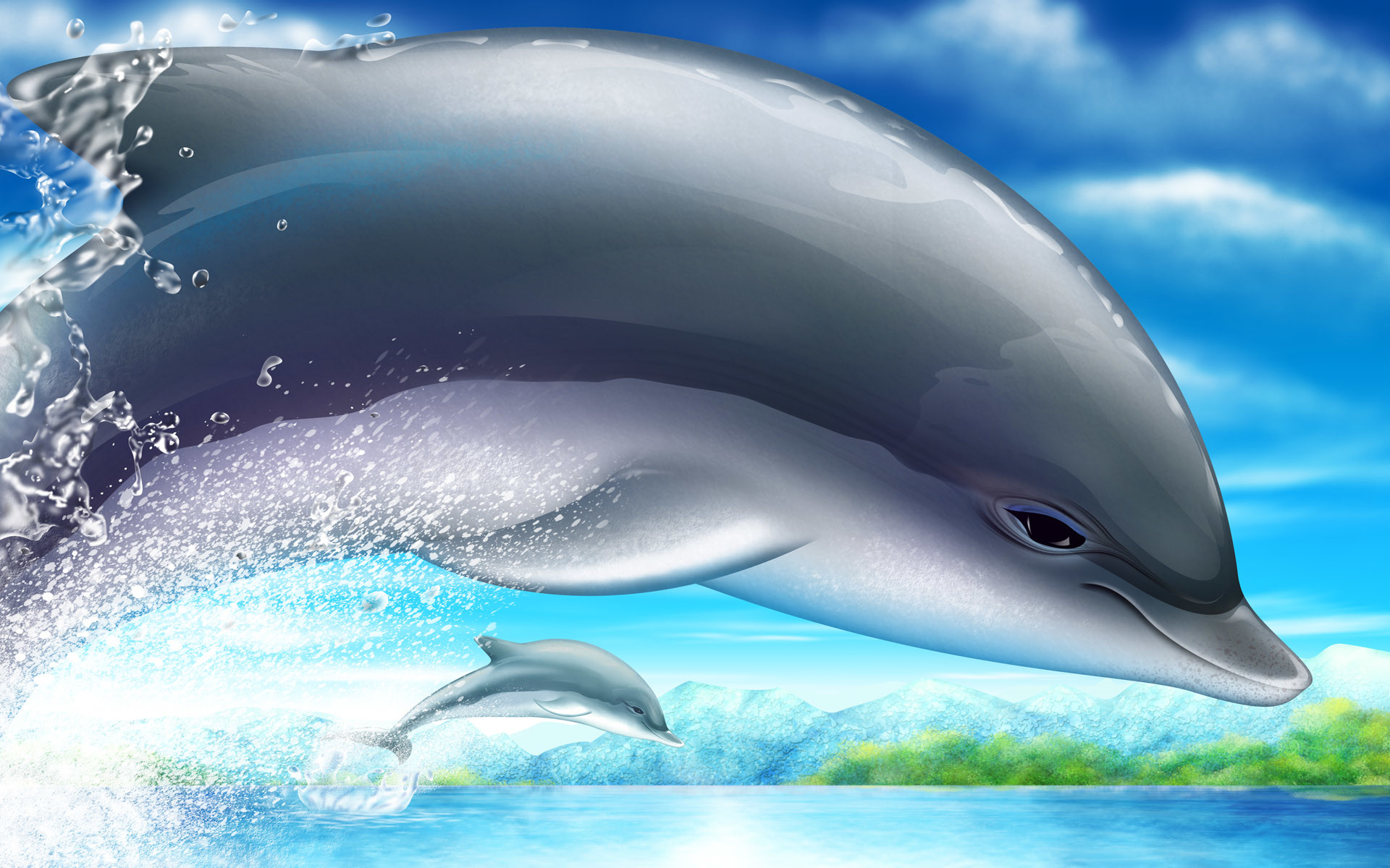 Dolphin Wallpapers For Desktop Wallpapertag