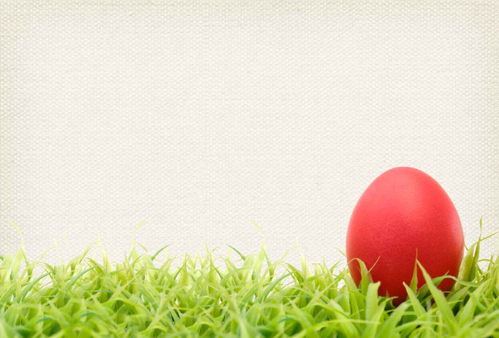 Easter Egg Background ·① Download Free Amazing HD