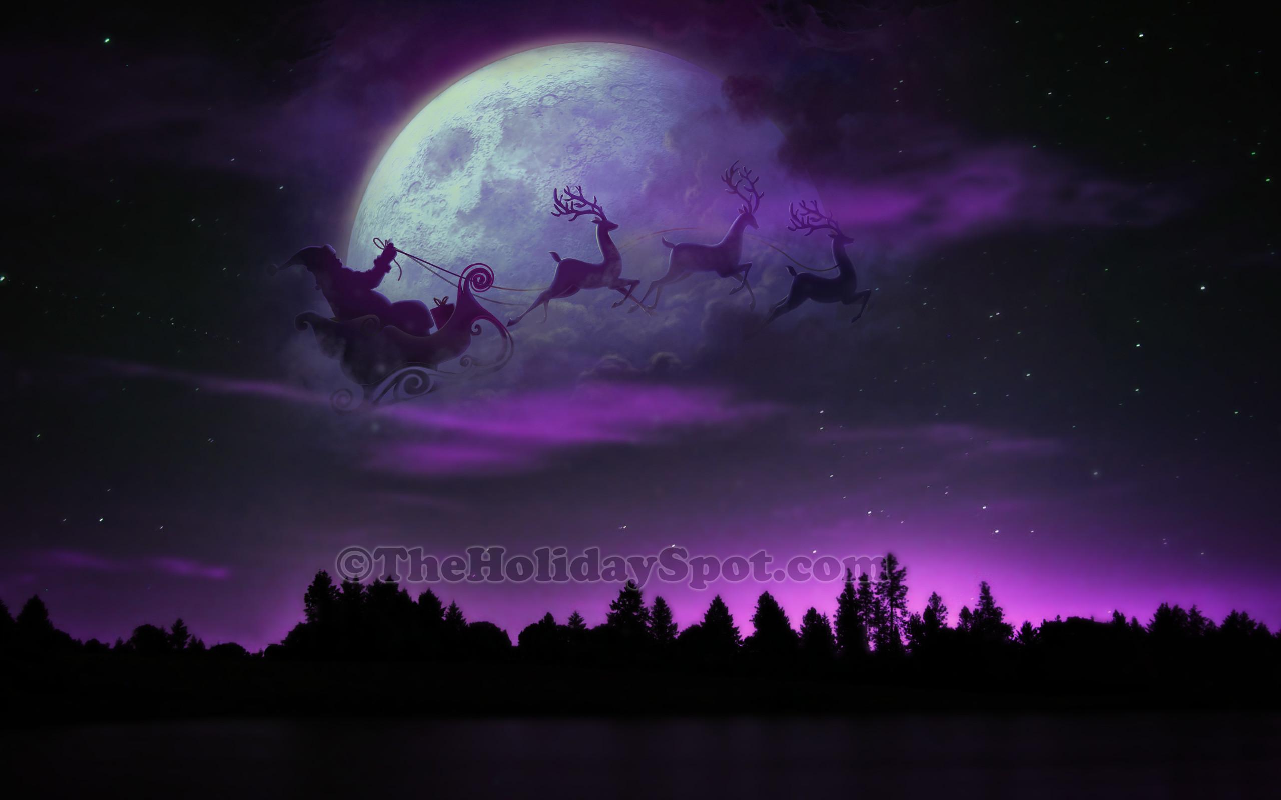 Outdoor Christmas Lights Reindeer And Sleigh