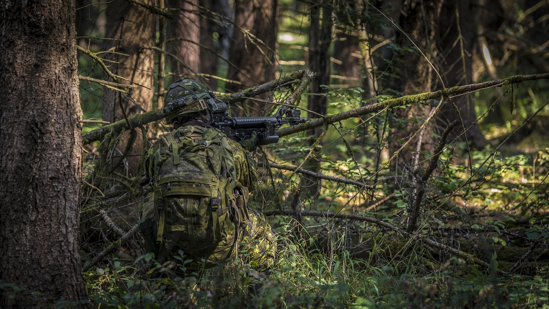 Army Camo Wallpaper: Woodland Camo Wallpaper ·①