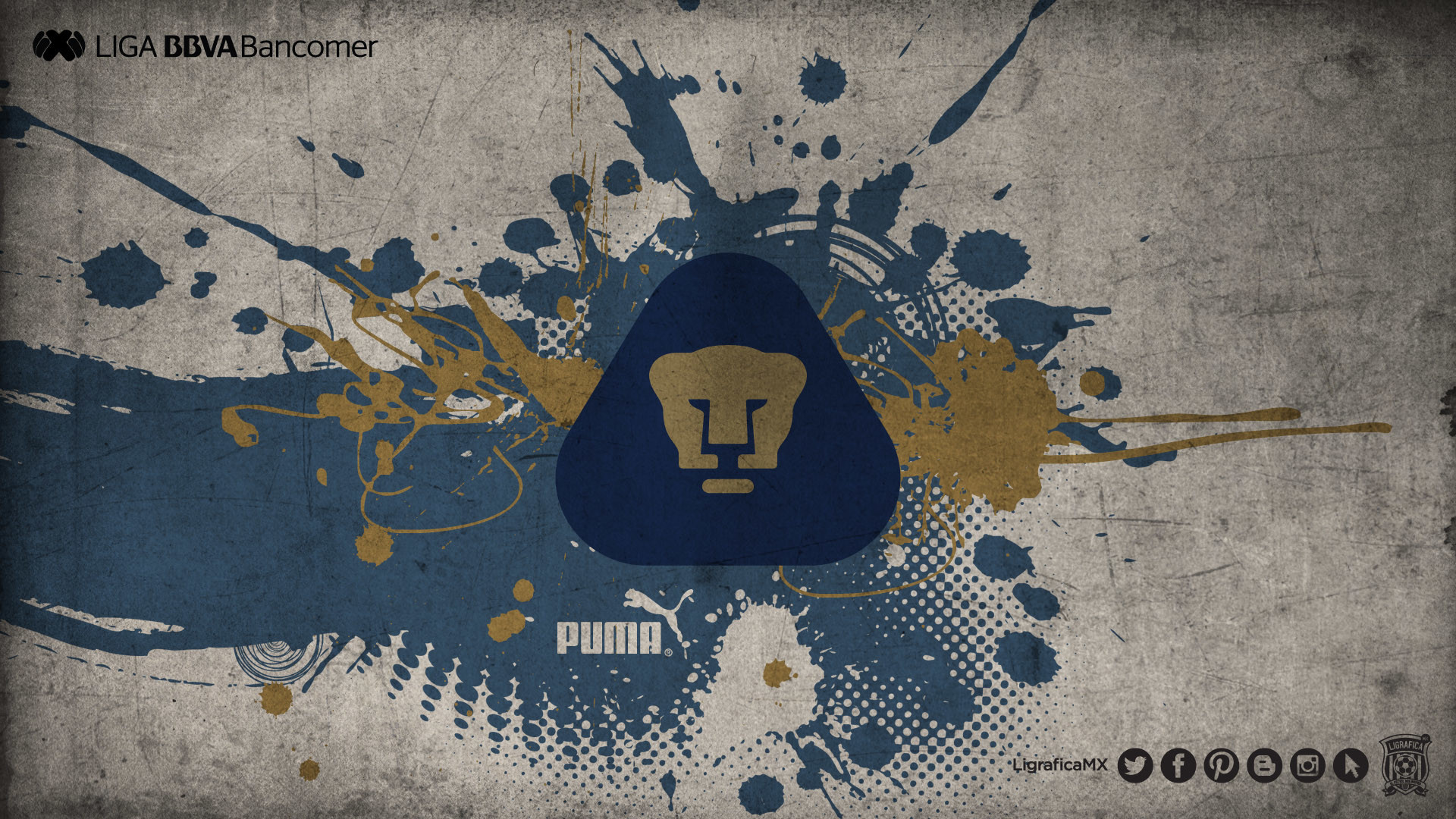 puma wallpaper iphone - HD1920×1080