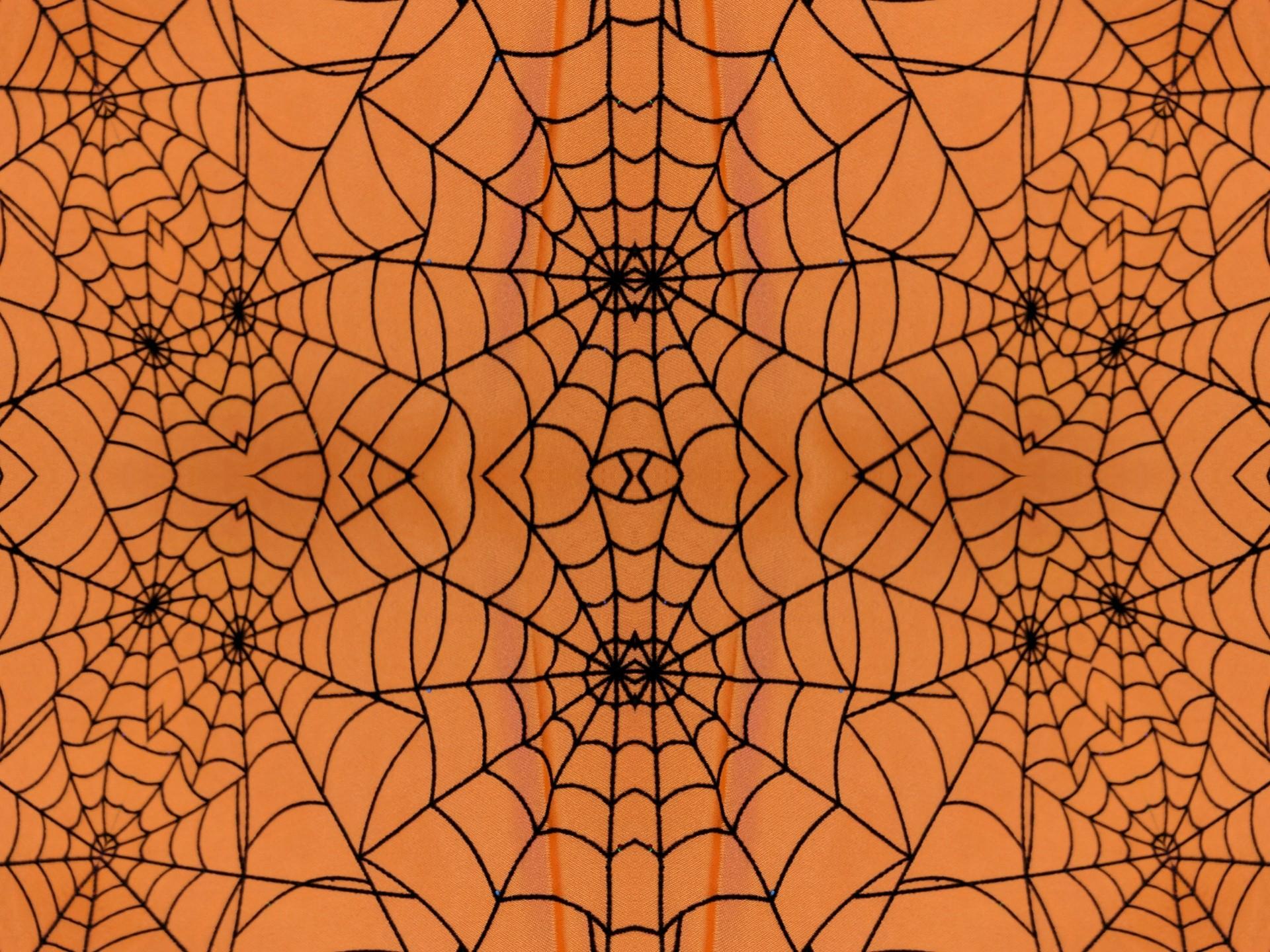 Download Wallpaper Halloween Spider - 955131-spider-web-background-1920x1440-ipad-retina  HD_55312.jpg