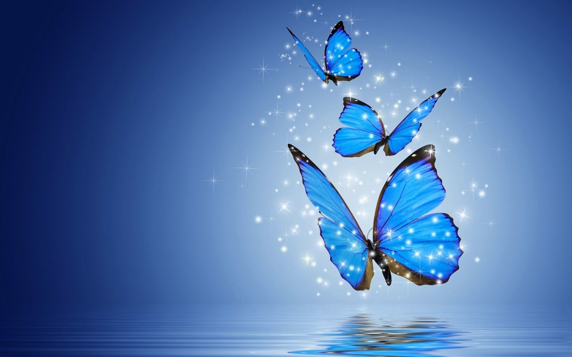 Butterflies Wallpapers Hd Download: Butterfly Computer Wallpaper ·① WallpaperTag