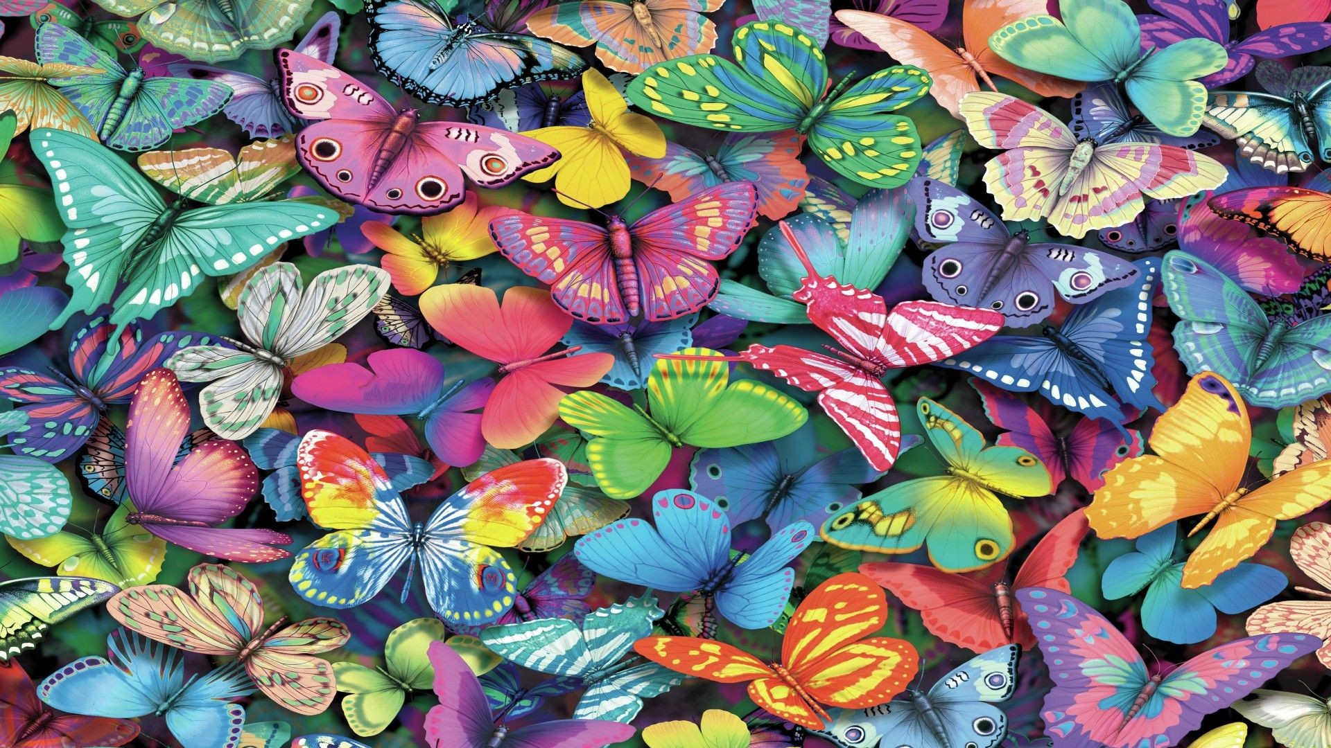 Butterfly Wallpaper Rainbow Butterfly Wallpaper Hd: Butterfly Desktop Backgrounds ·① WallpaperTag