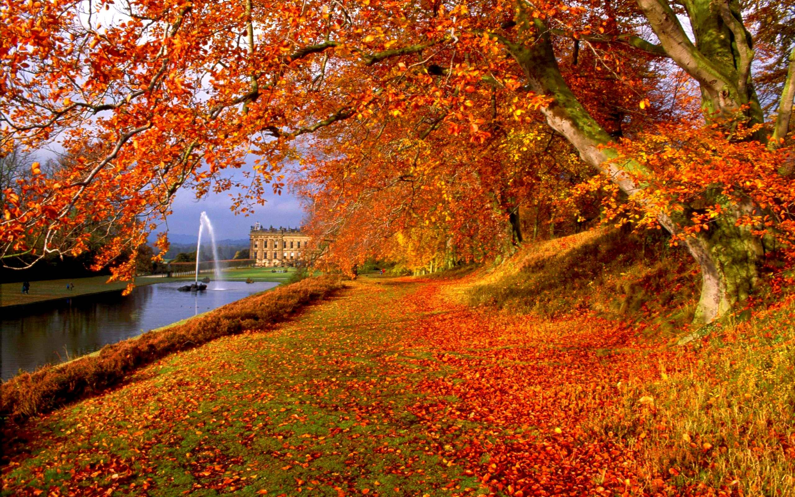 42+ Autumn Backgrounds ·① Download Free Stunning HD